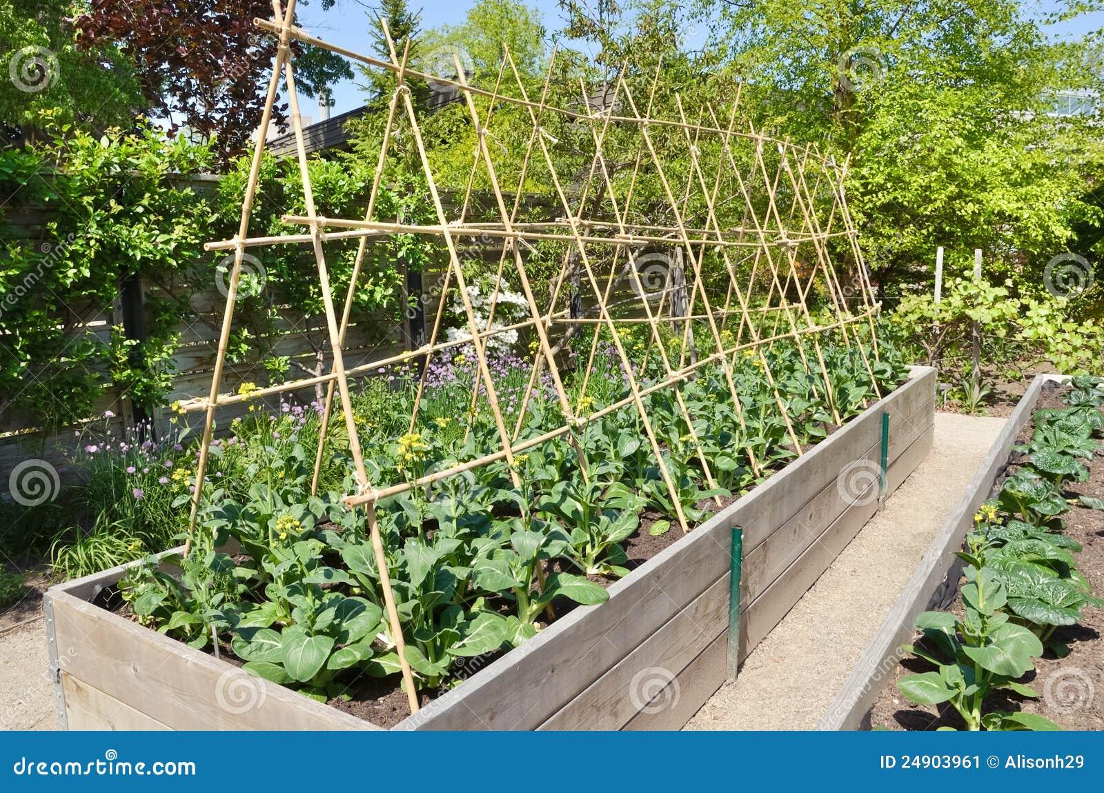 Kitchen Garden Stock Image - Image: 24903961