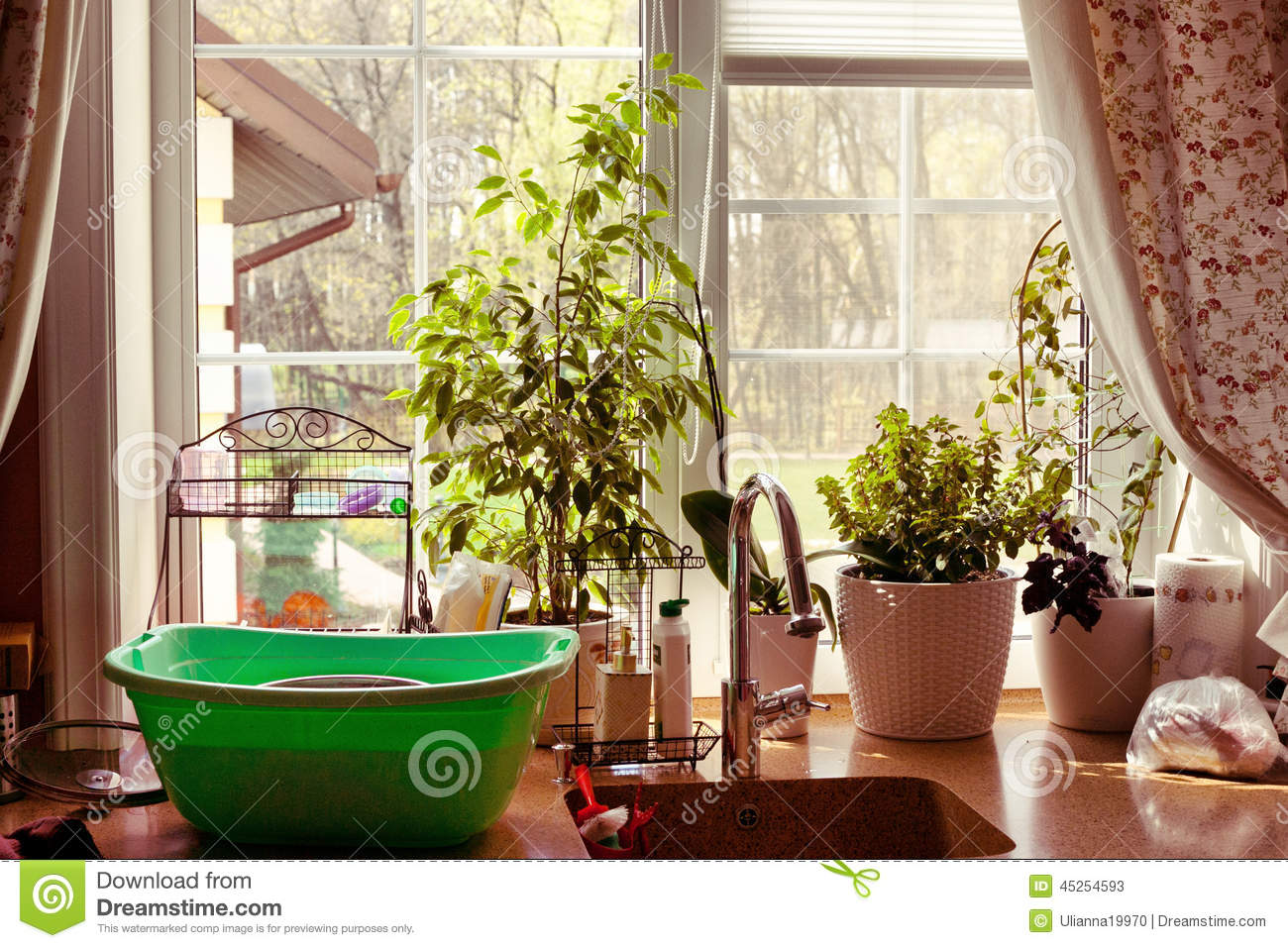 Kitchen Window Garden View Plants Stock Image Image