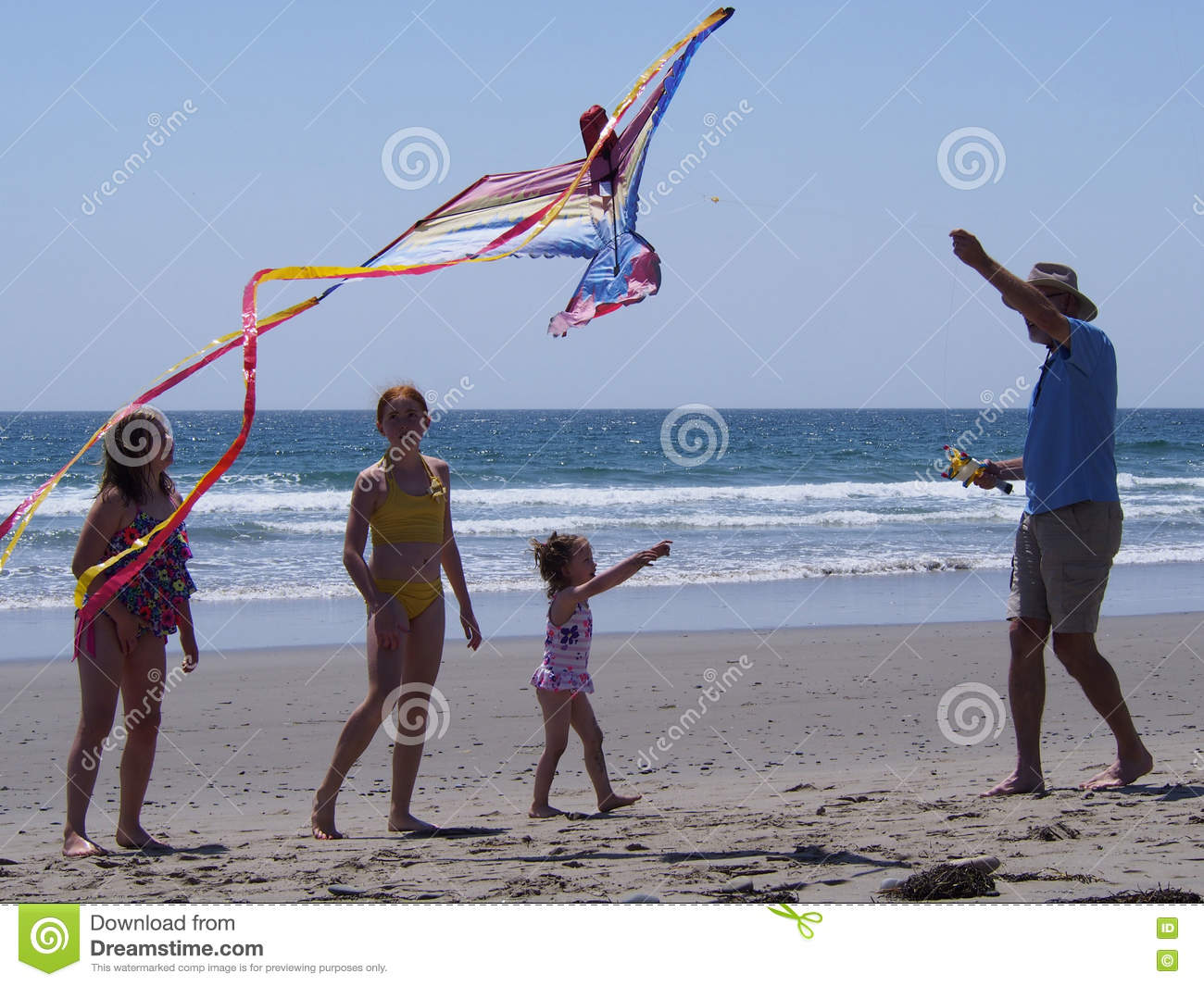 KITE FLYING editorial image  Image of summer, beach, aloft - 77668205