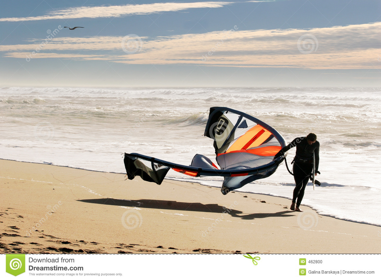 Download Kite surfer on the beach stock photo. Image of holiday - 462800