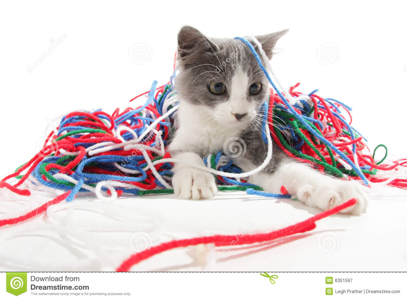 Kitten Playing With Yarn Royalty Free Stock Photography ...