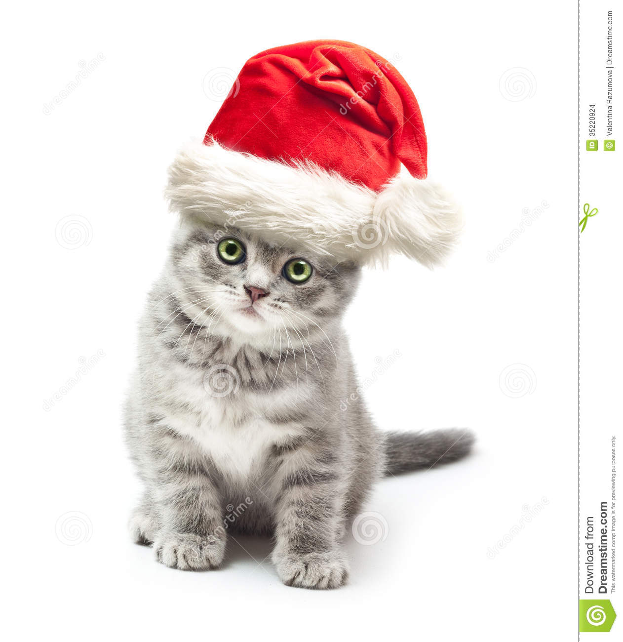 Santa Claus Hat For Cats