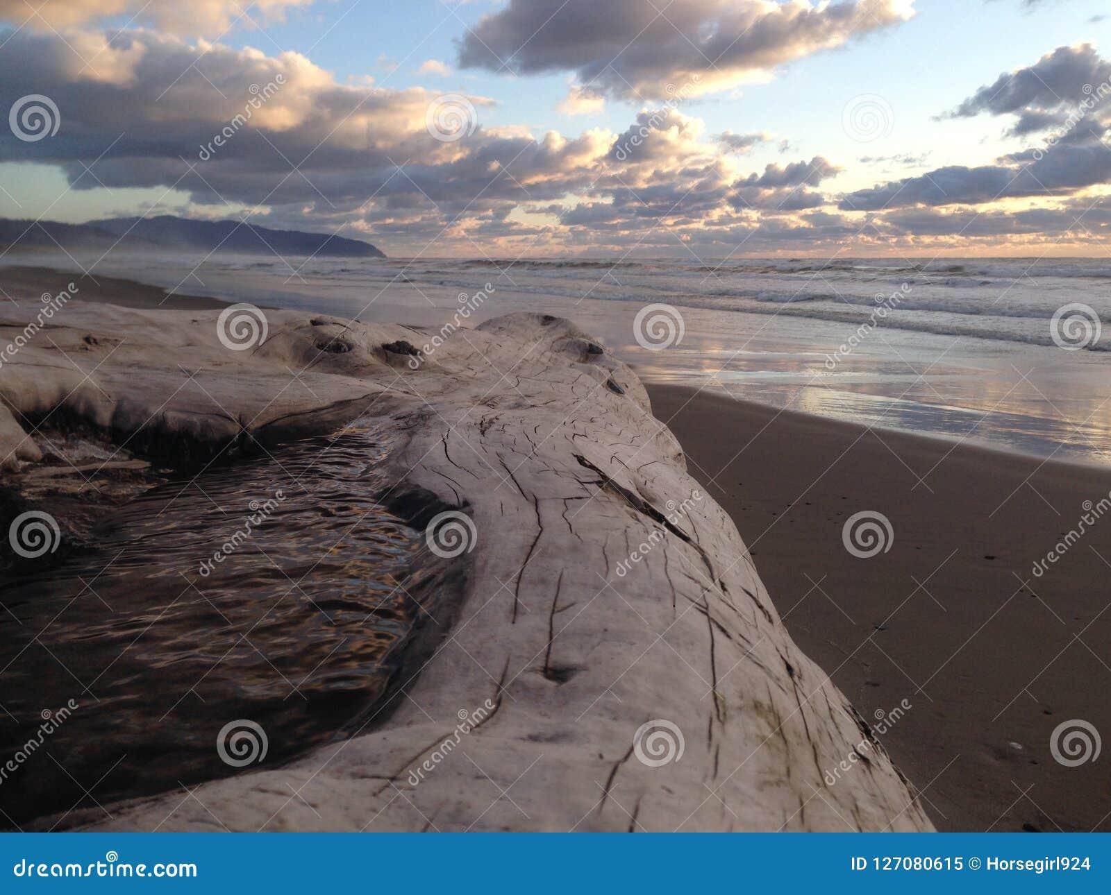 Kiwanda Oregon plaża z belą i Wspaniałym zmierzchem