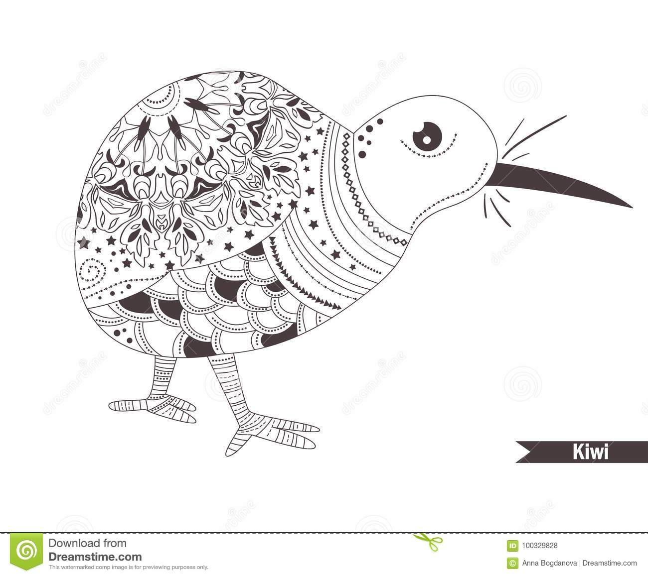 Kiwi zentangle style coloring book for adult antistress coloring pages hand drawn vector isolated illustration on white background