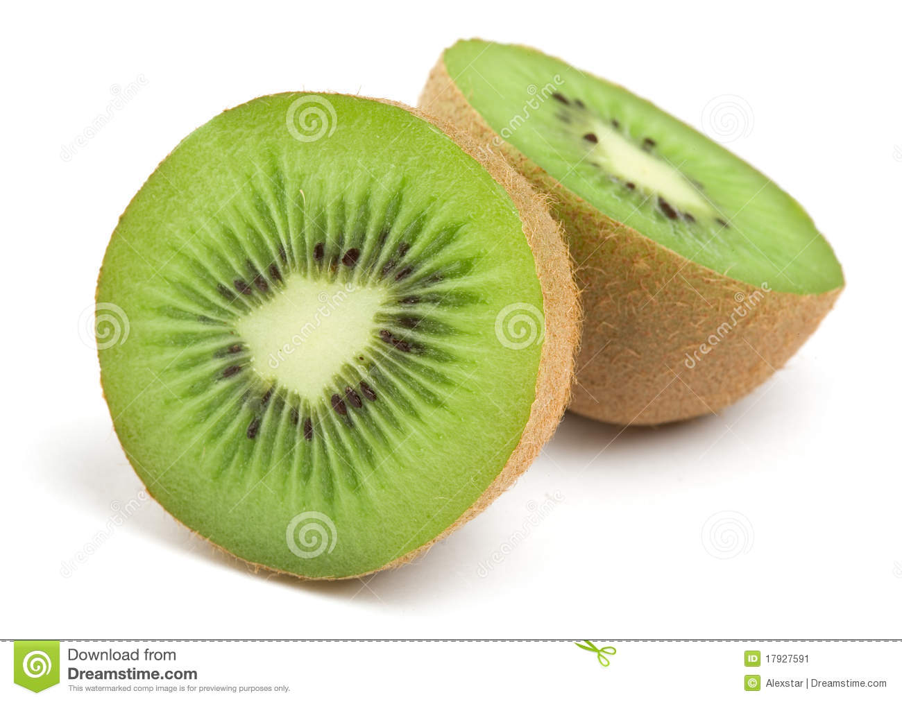 Kiwi bird cut in half - photo#12