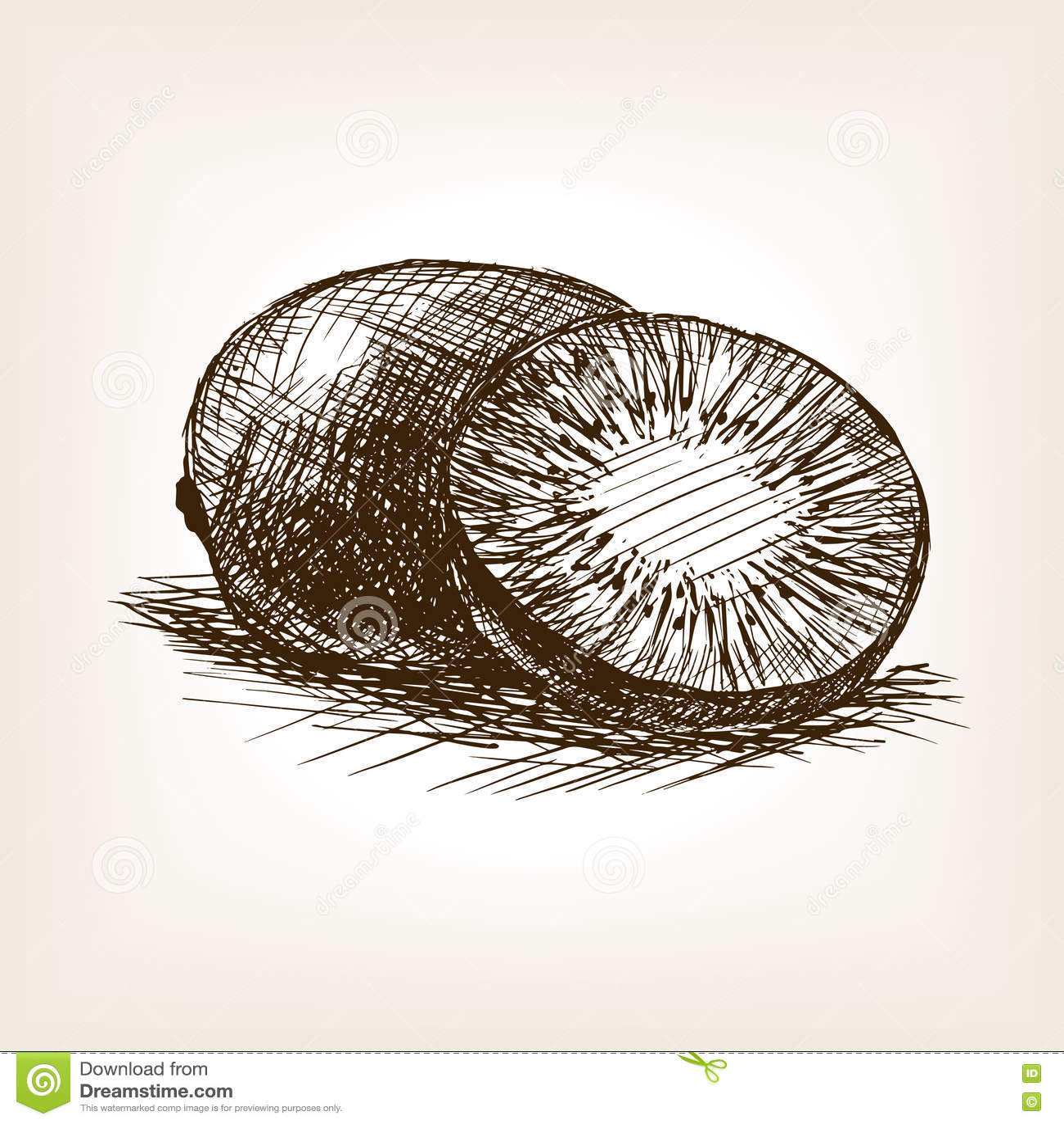 Line Drawing Kiwi : Kiwi fruit hand drawn sketch style vector stock