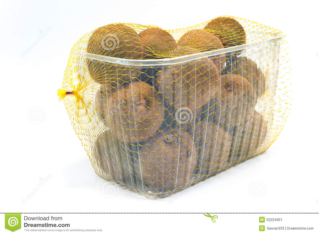 Download Kiwi fruit in plastic bowl stock image. Image of plastic - 52224051