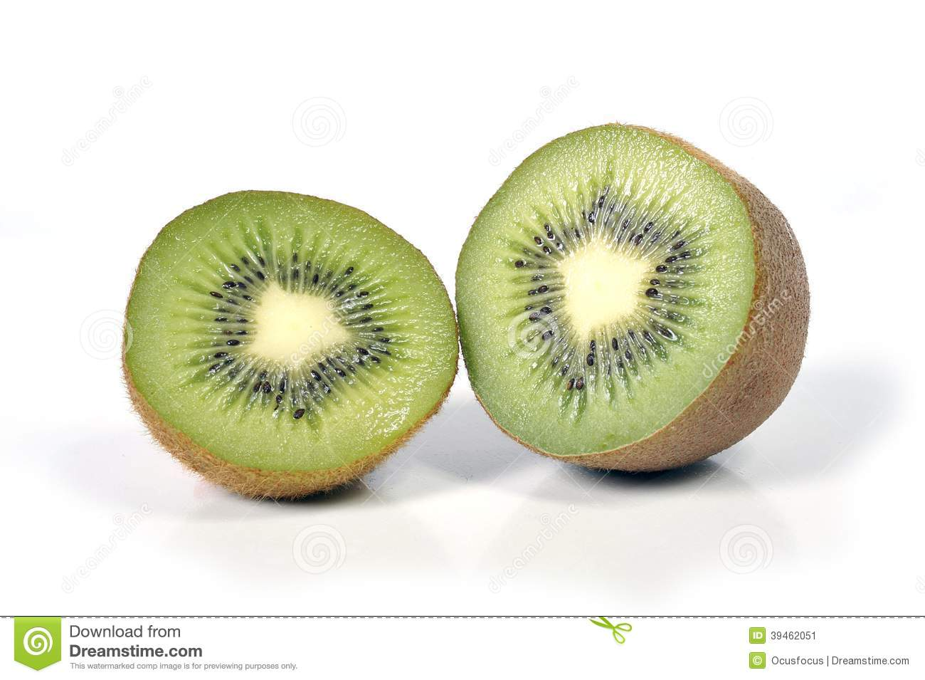 Kiwi fruit stillife isolated on white background healthy nutrition concept