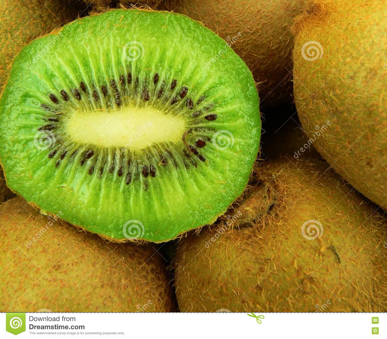 2498d1a0356 Stock Images  Kiwi Fruits Picture. Image  2338654