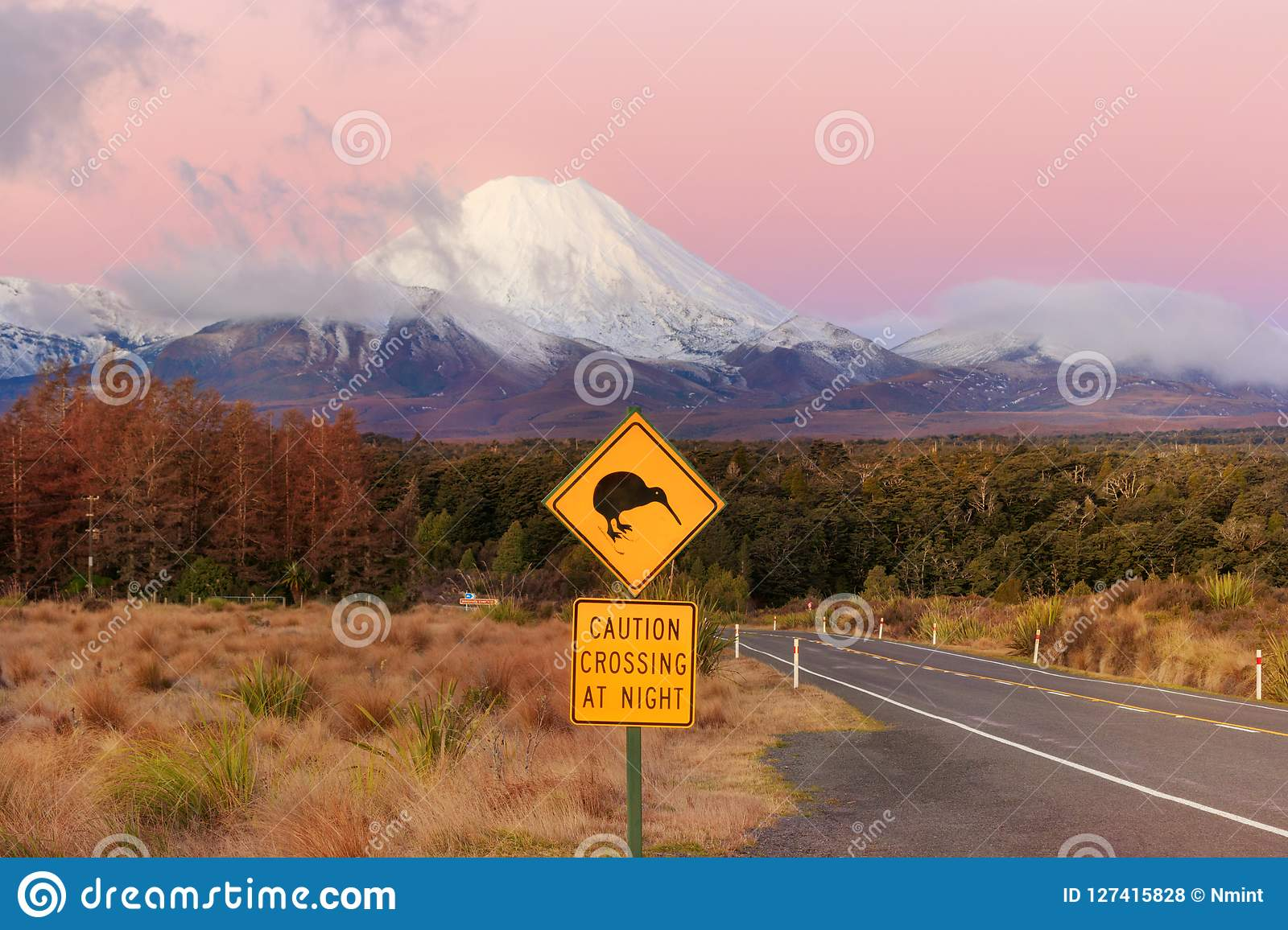 Kiwi road sign and volcano Mt. Ngauruhoe at sunset, Tongariro Na