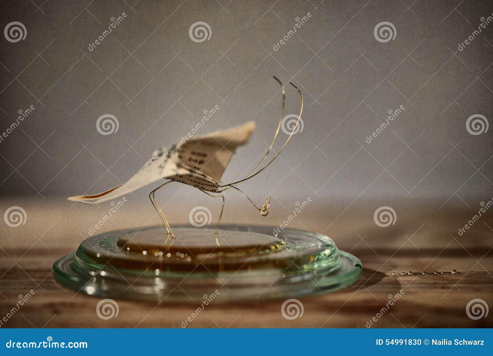 Klämmt fast papper för affärsfjärilskort