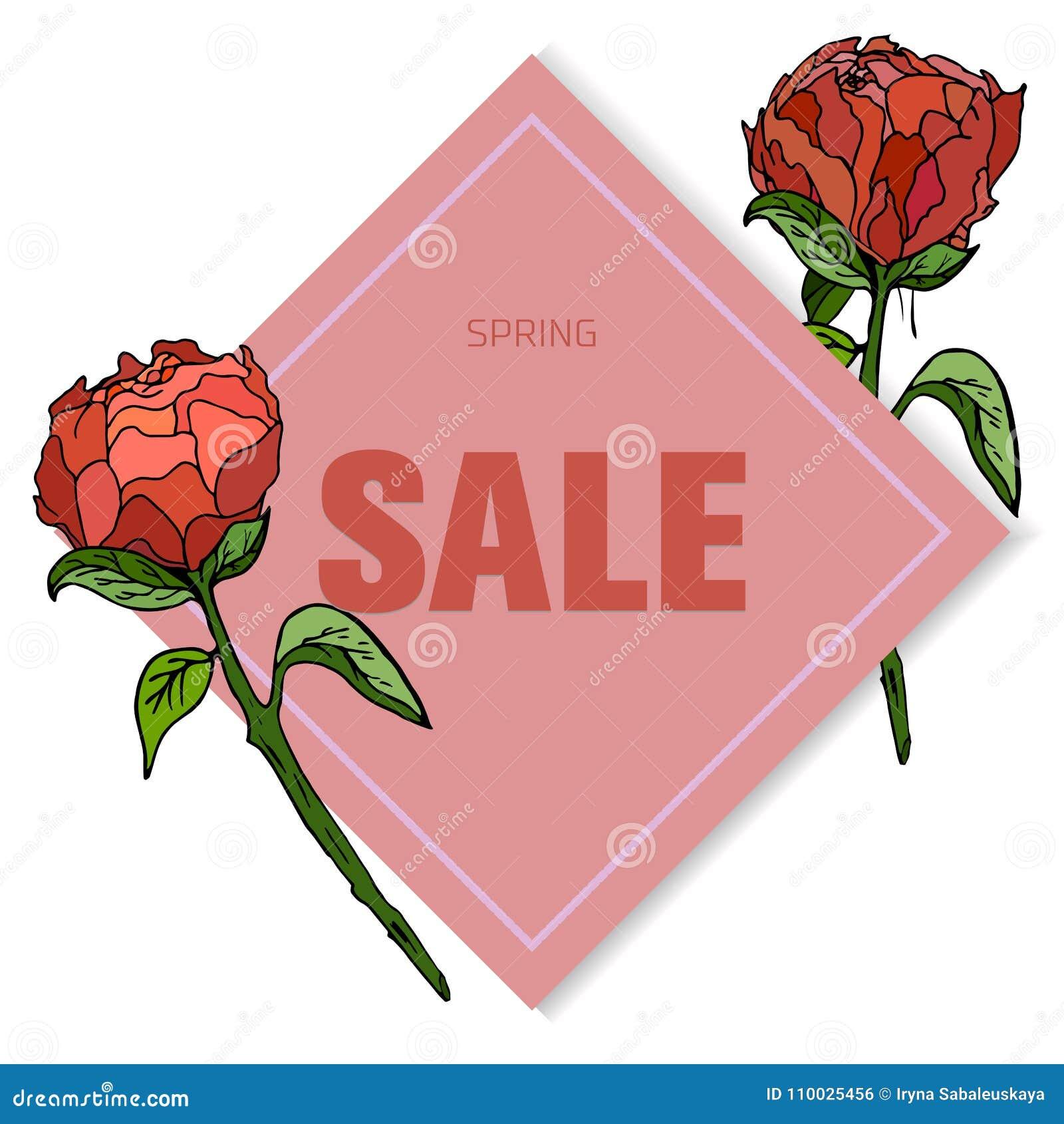 Klassieke bloemenverkoopkaart, botanische vectorillustratie