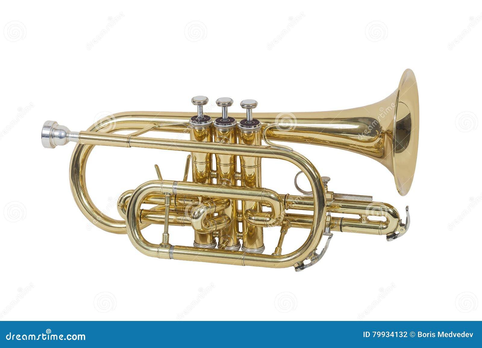 Klassisk vindmusikinstrumentkornett som isoleras på vit bakgrund