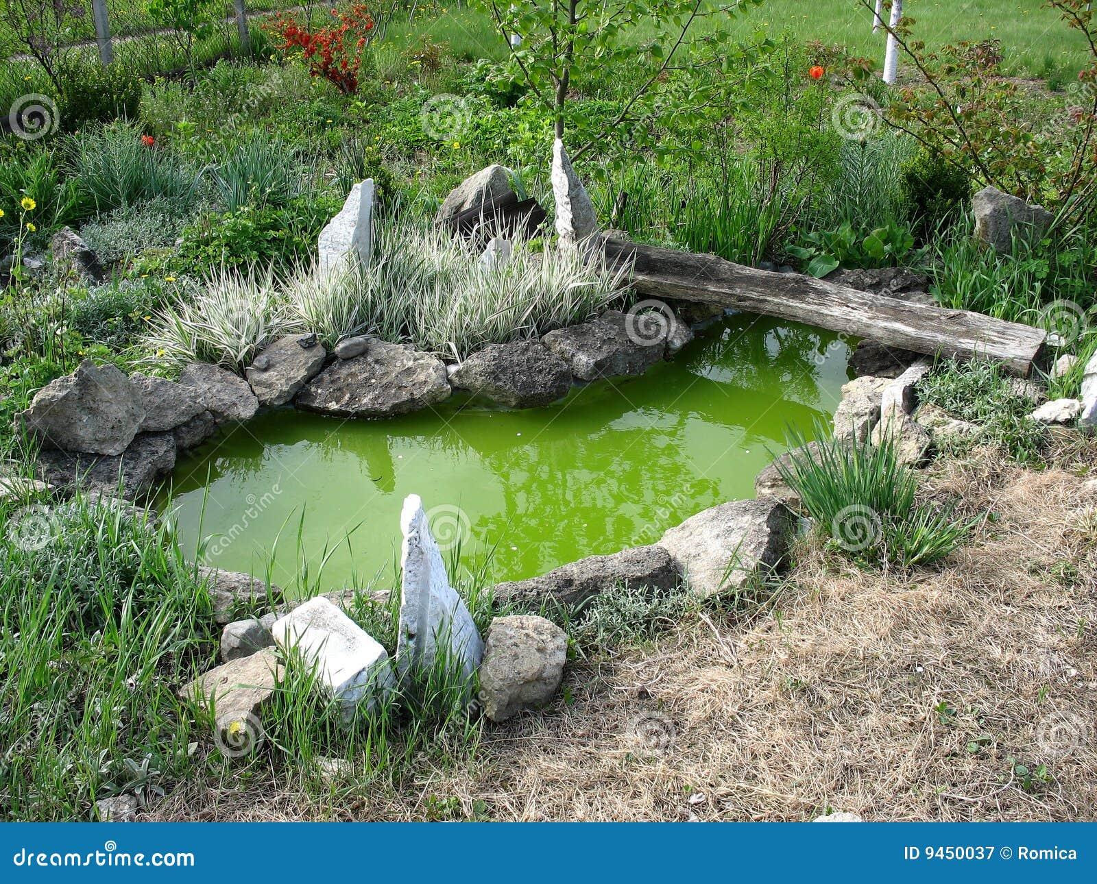 Kleine decoratieve vijver stock afbeelding afbeelding bestaande uit groen 9450037 - Tuin decoratie buitenkant ...