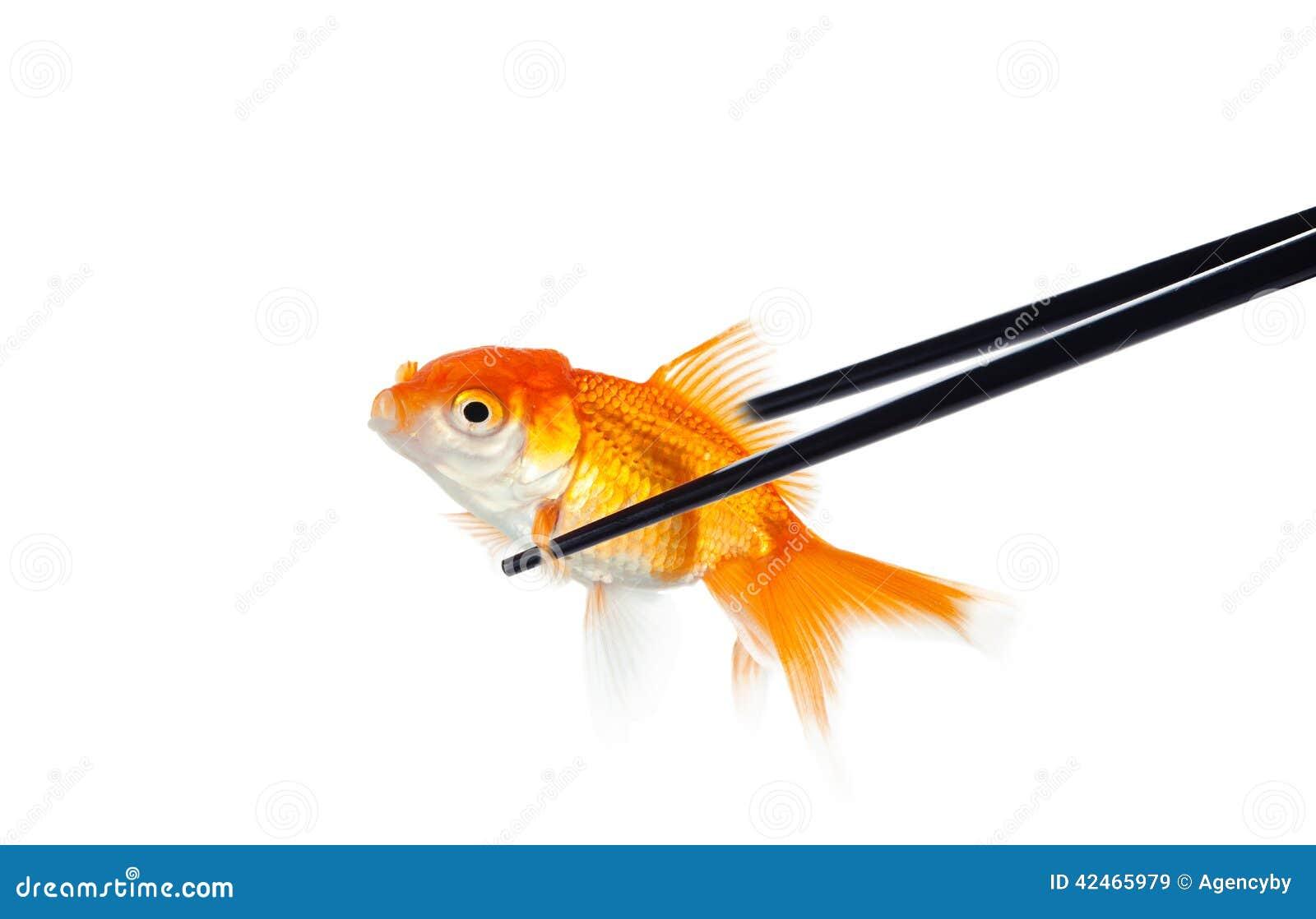 Kleine Fische in den Essstäbchen für Sushi