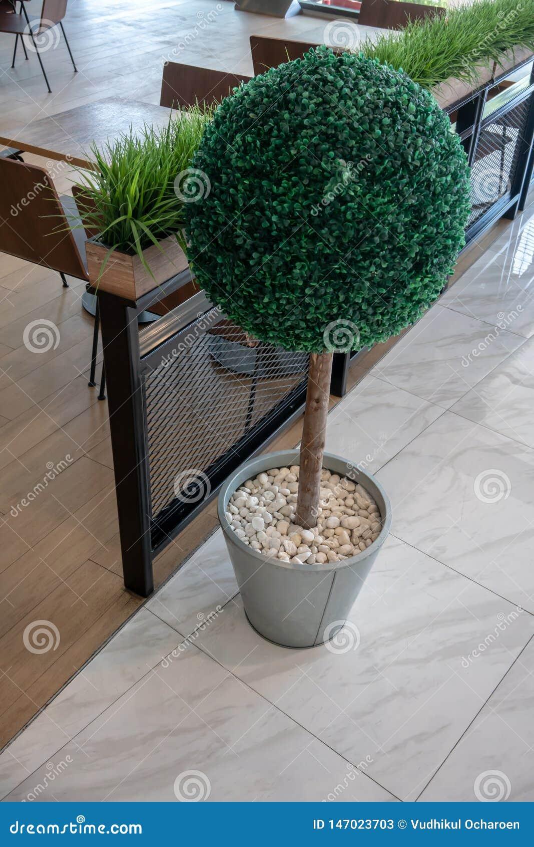 Kleine kunstmatige boom in een pot met witte grintsteen voor binnenhuisarchitectuur