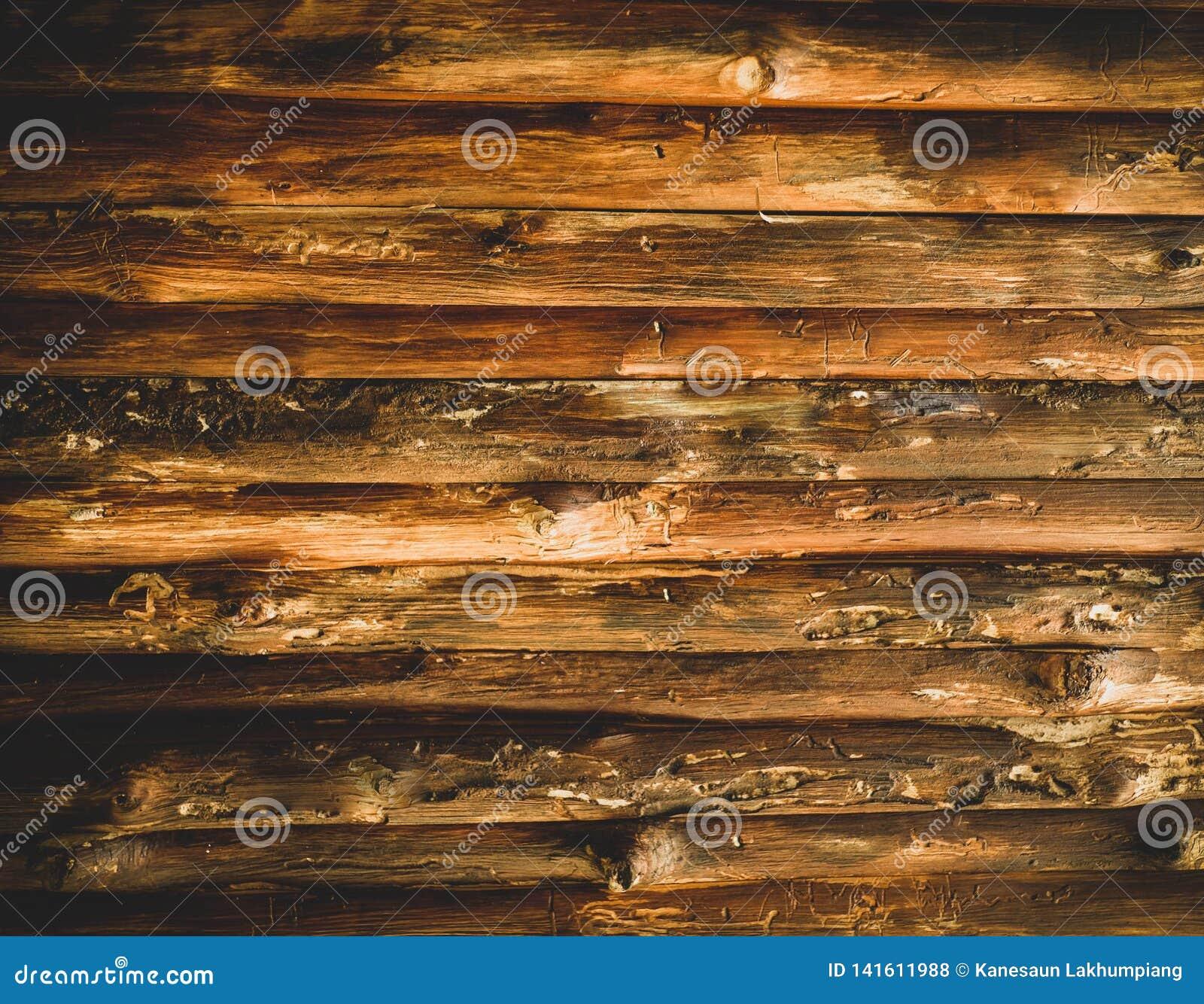 Kleine oude logboekenachtergrond voor ideeën
