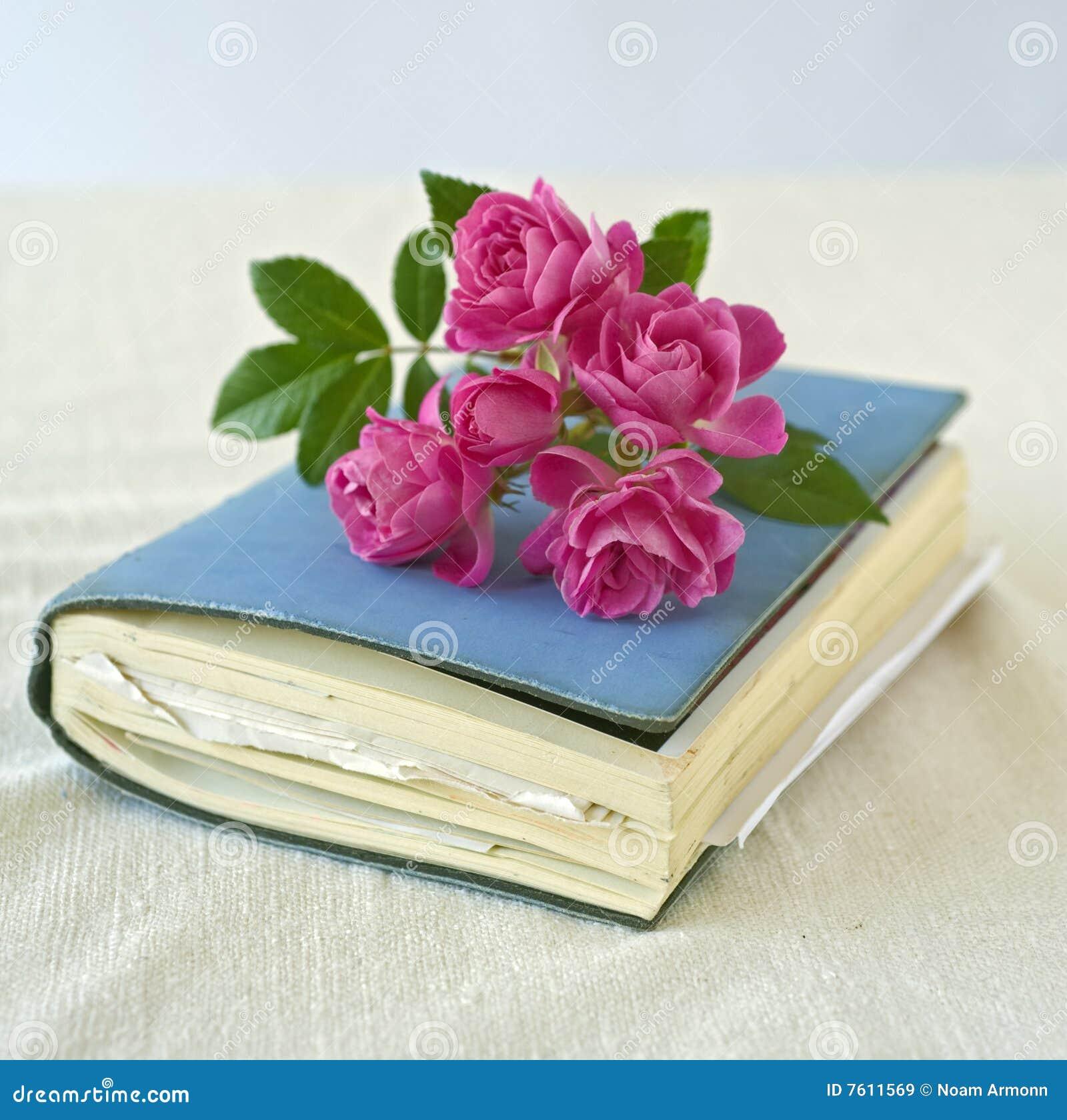 kleine rosen auf einem tagebuch lizenzfreie stockbilder. Black Bedroom Furniture Sets. Home Design Ideas