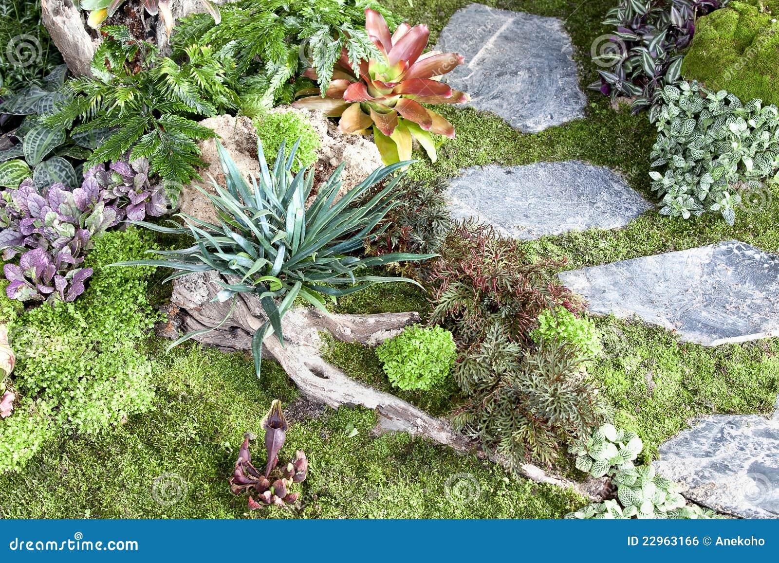Kleine tuin royalty vrije stock afbeelding afbeelding 22963166 - Tuin decoratie buitenkant ...