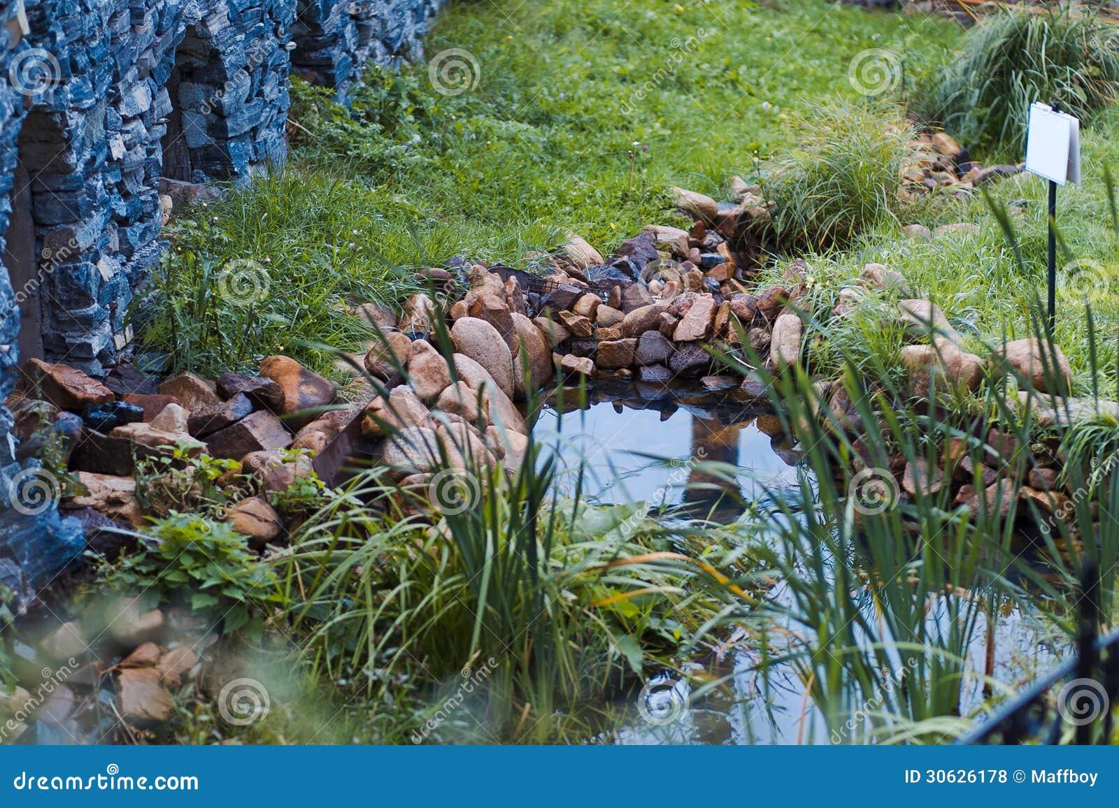 Kleine vijver in de tuin stock foto afbeelding bestaande for Vijver in tuin