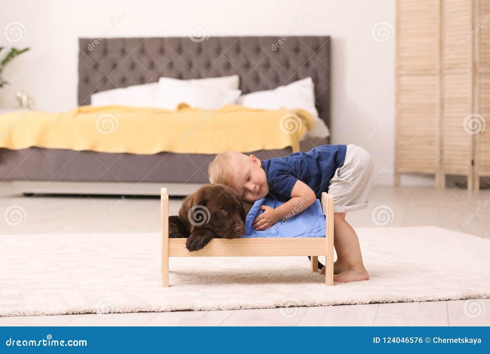 Kleiner Junge, der mit entzückender Schokolade Labrador spielt