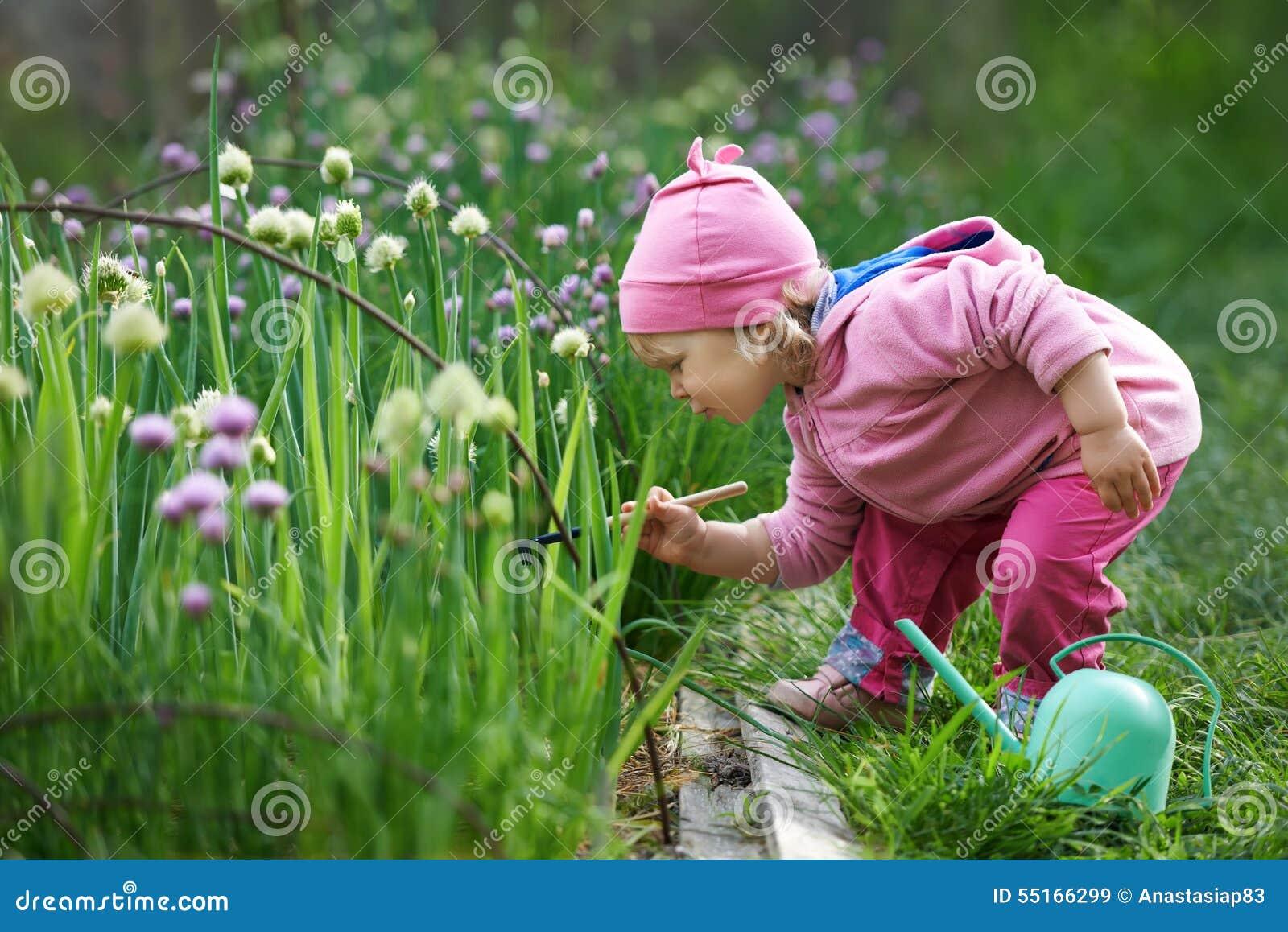 Kleiner Landwirt, der Zwiebeln im Garten harkt