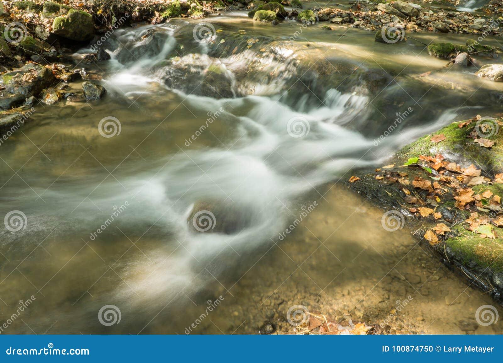 Kleiner Wasserfall auf dem Brüllen des Laufnebenflusses, Jefferson National Forest, USA