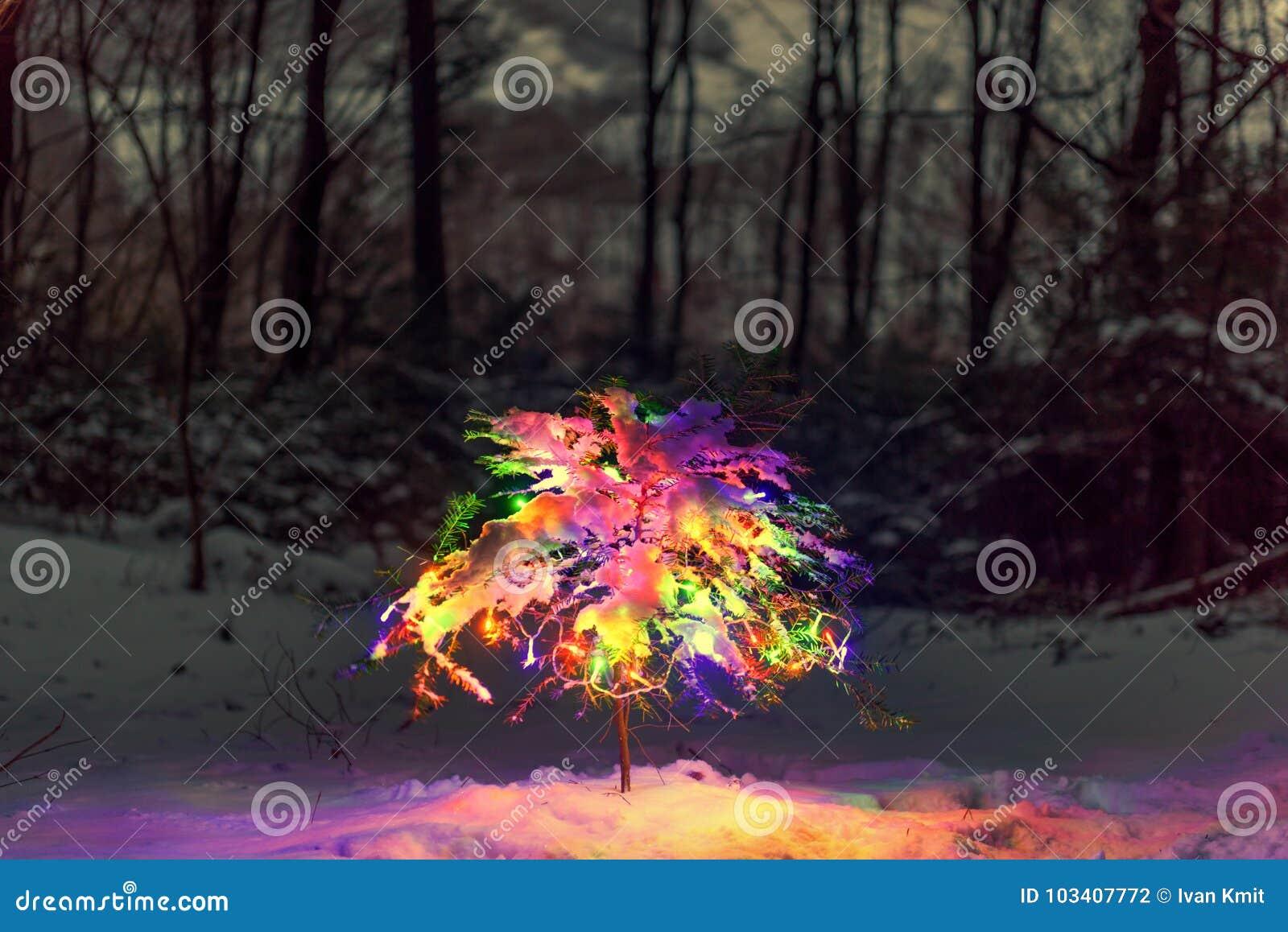 Kleiner Weihnachtsbaum mit Lichtern