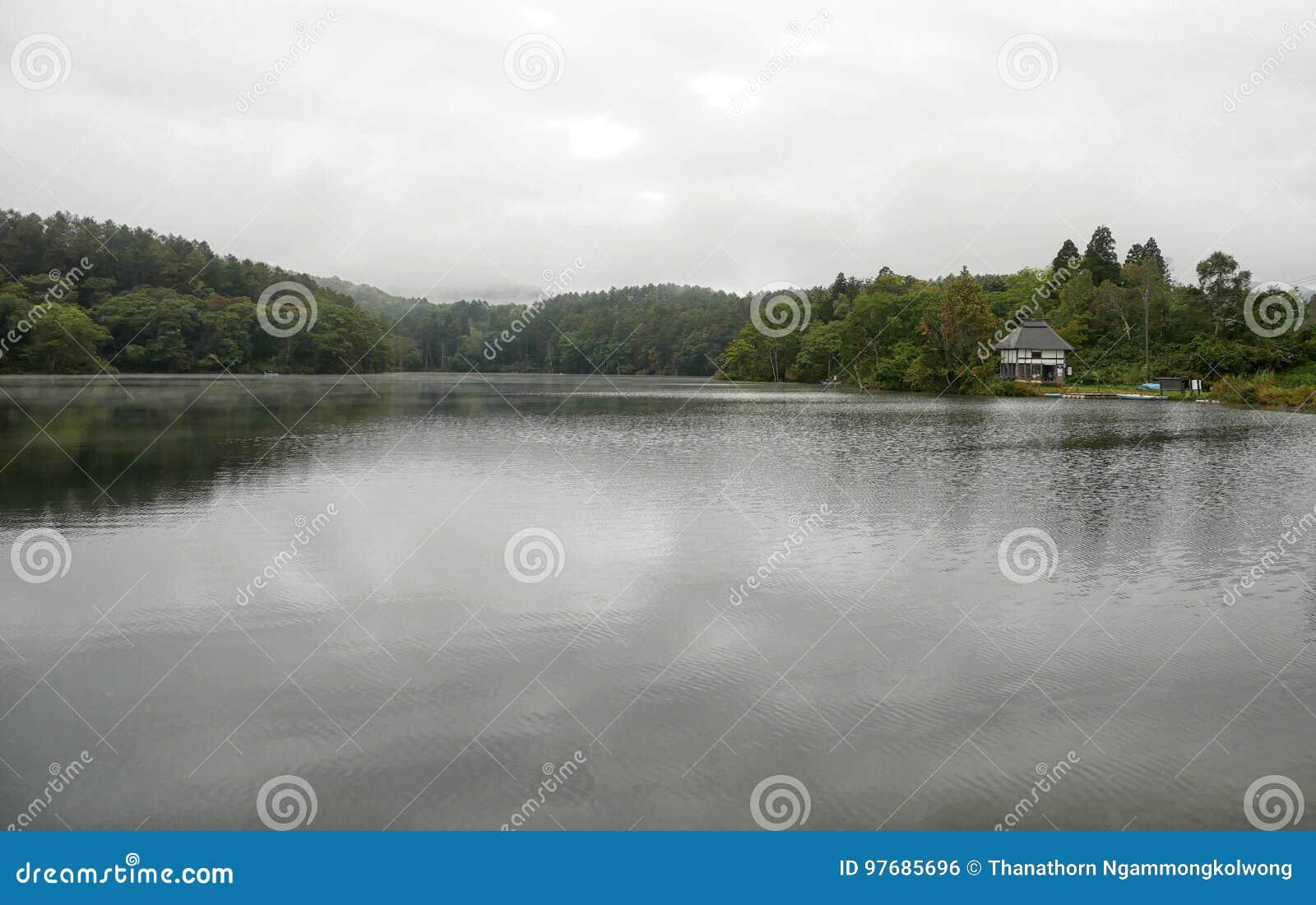 Kleines Haus Neben See Am Regnerischen Tag Stockfoto - Bild von baum ...