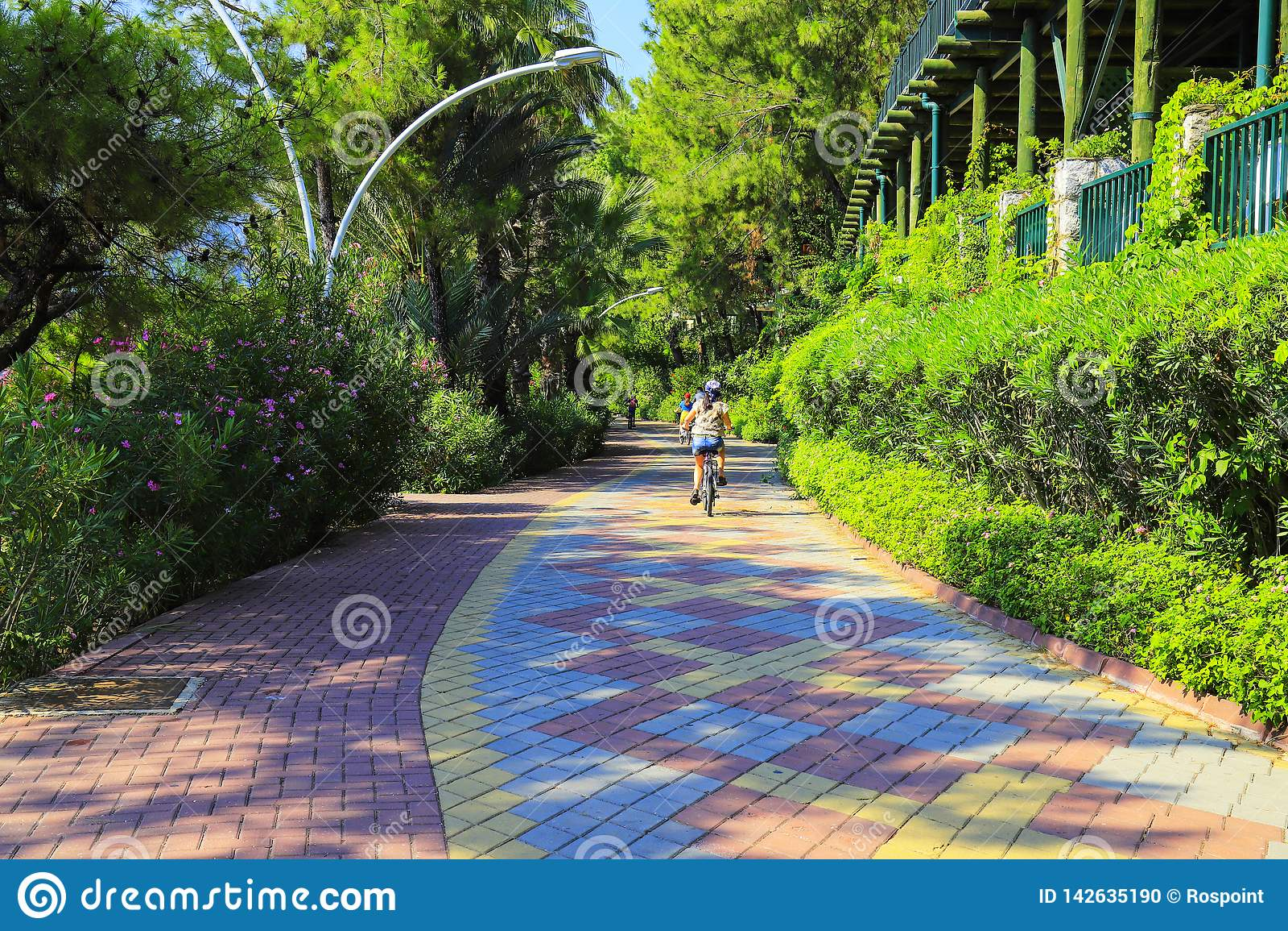 Kleines Kind fährt Fahrrad entlang einem Zyklusweg von mehrfarbigen Pflasterungsfliesen unter grünen Bäumen im Frühjahr und Somme