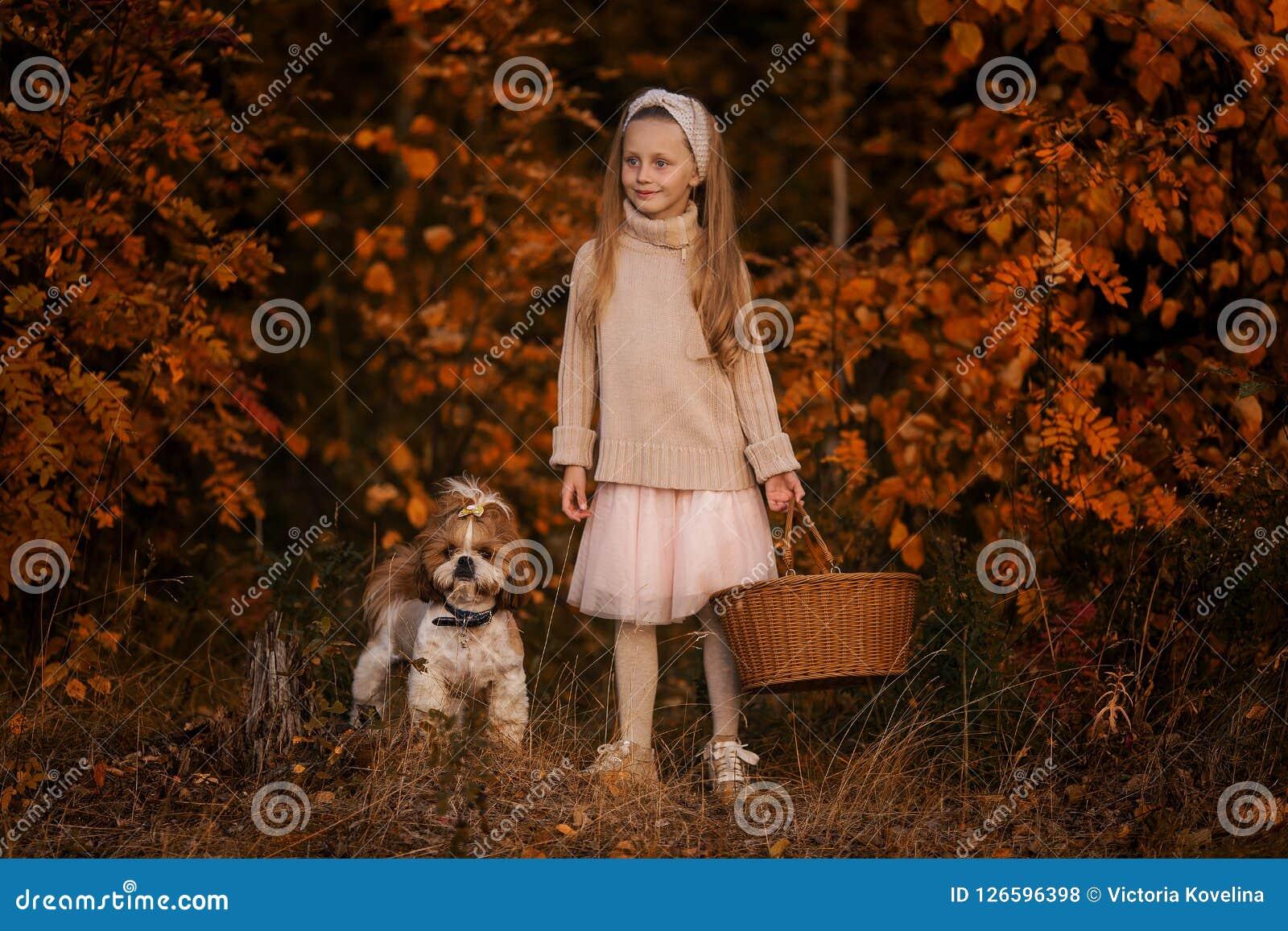 Kleines Mädchen mit einem Korb und einem Hund im Wald