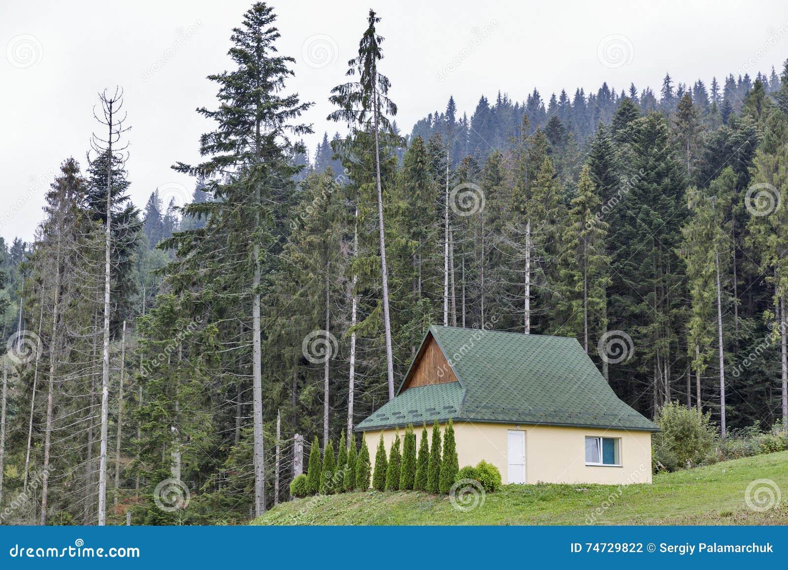Kleines Modernes Haus In Den Karpatenbergen