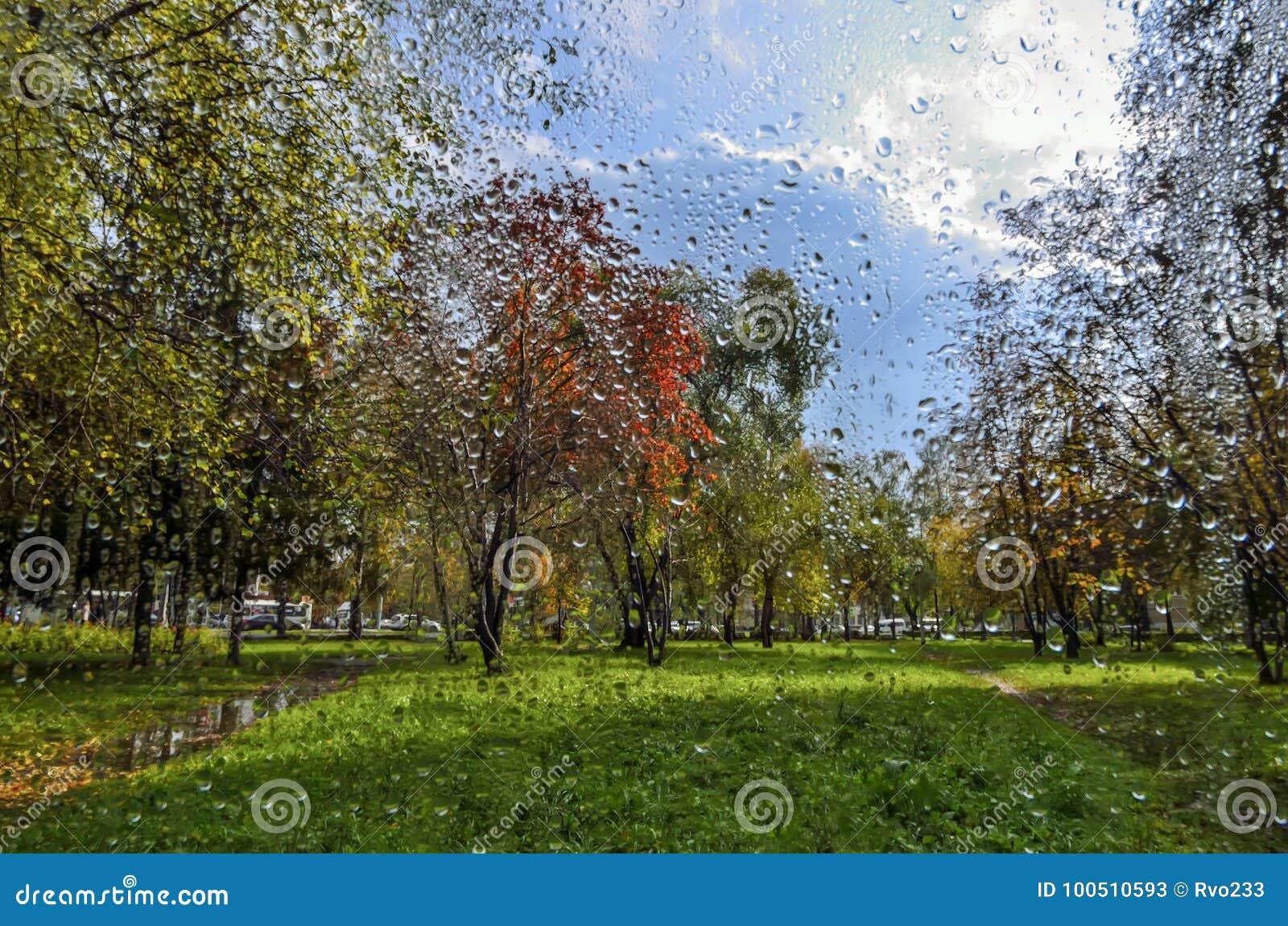 Regen En Zonneschijn : Kleurrijk de herfstlandschap regen en zonneschijn mening door