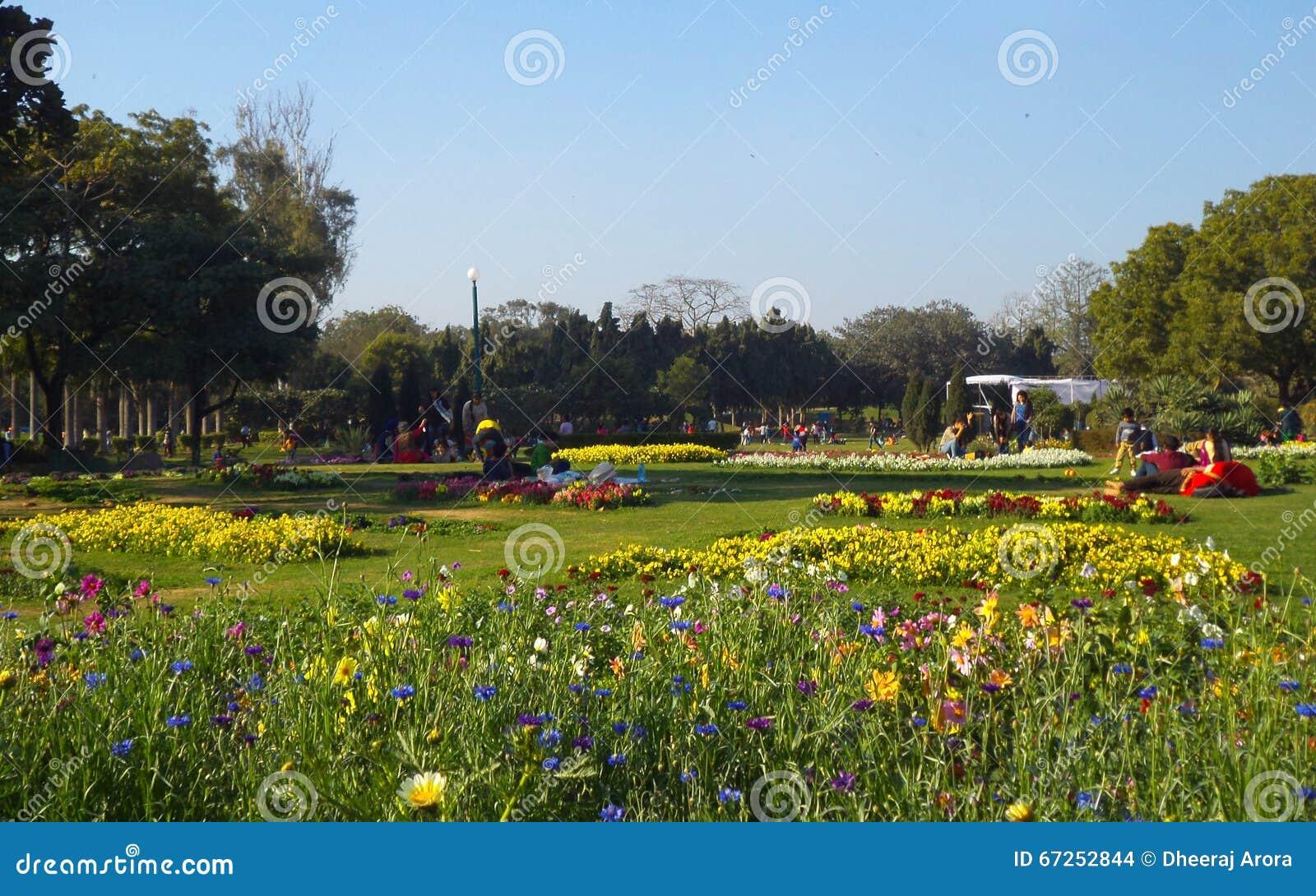 Kleurrijke bloembedden bij Nehru-Park, New Delhi