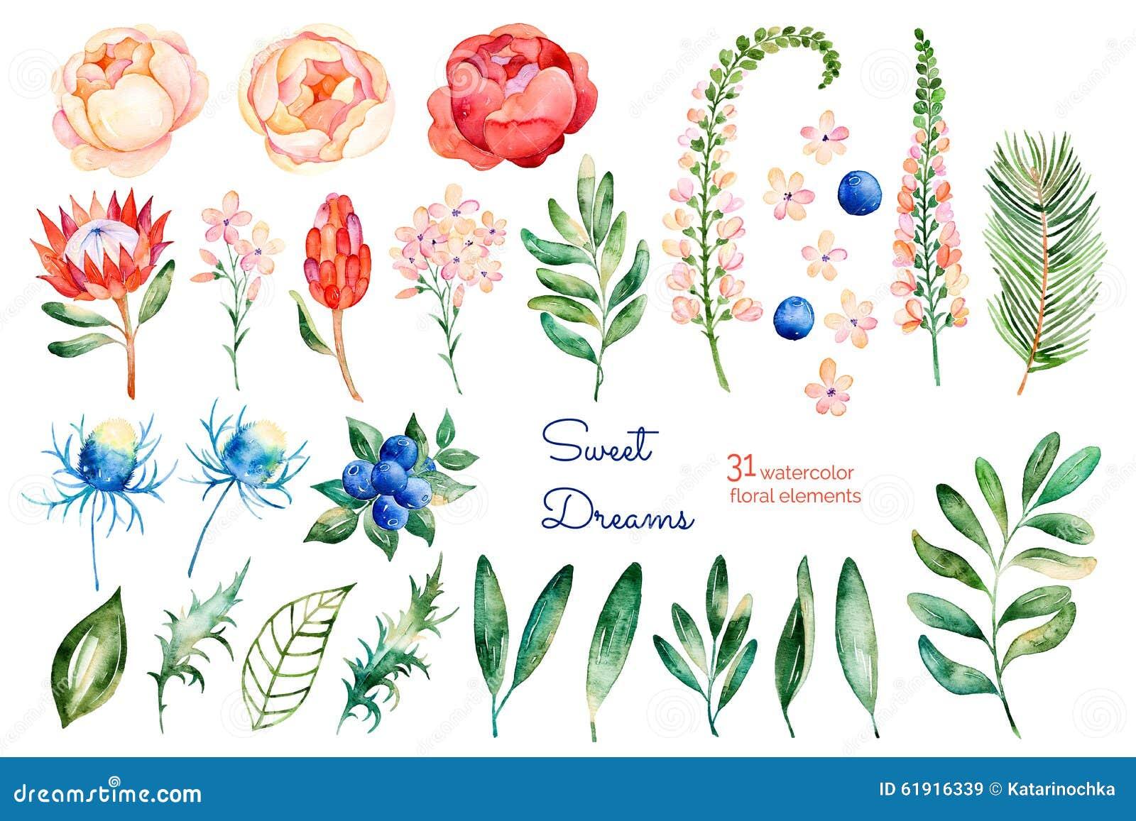 Kleurrijke bloemeninzameling met rozen, bloemen, bladeren, protea, blauwe bessen, nette tak, eryngium