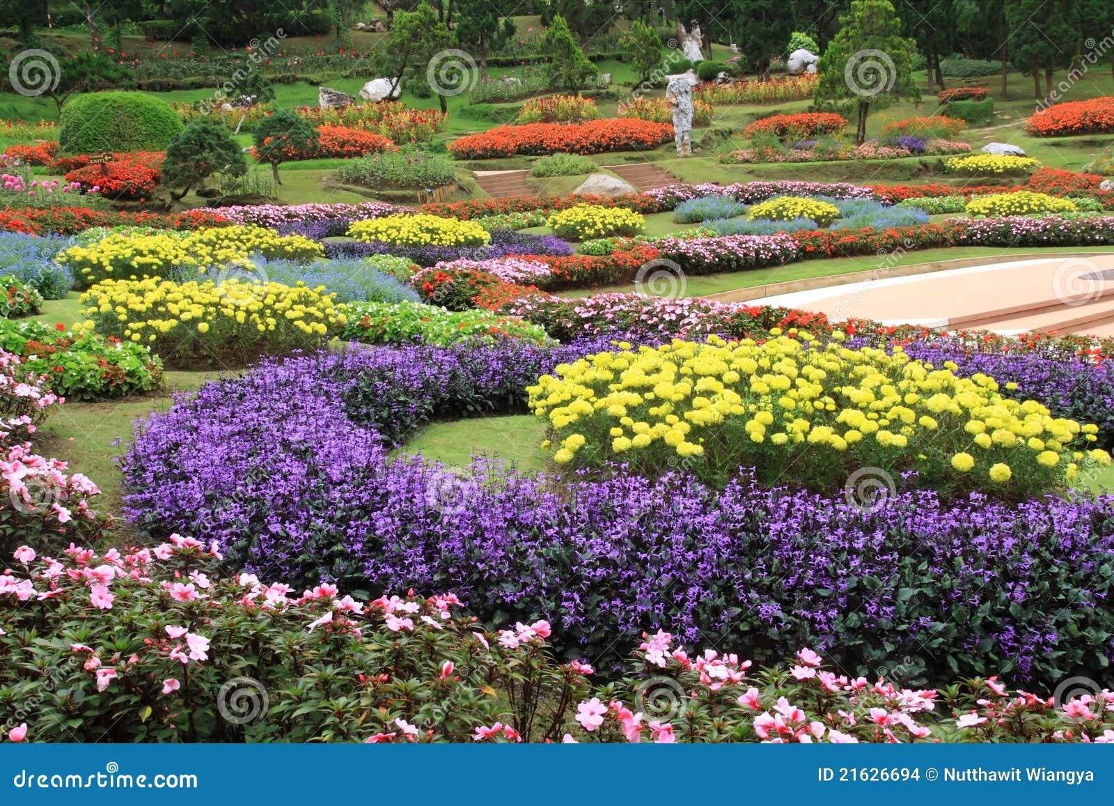 kleurrijke bloementuin stock foto afbeelding bestaande On www bloem en tuin nl