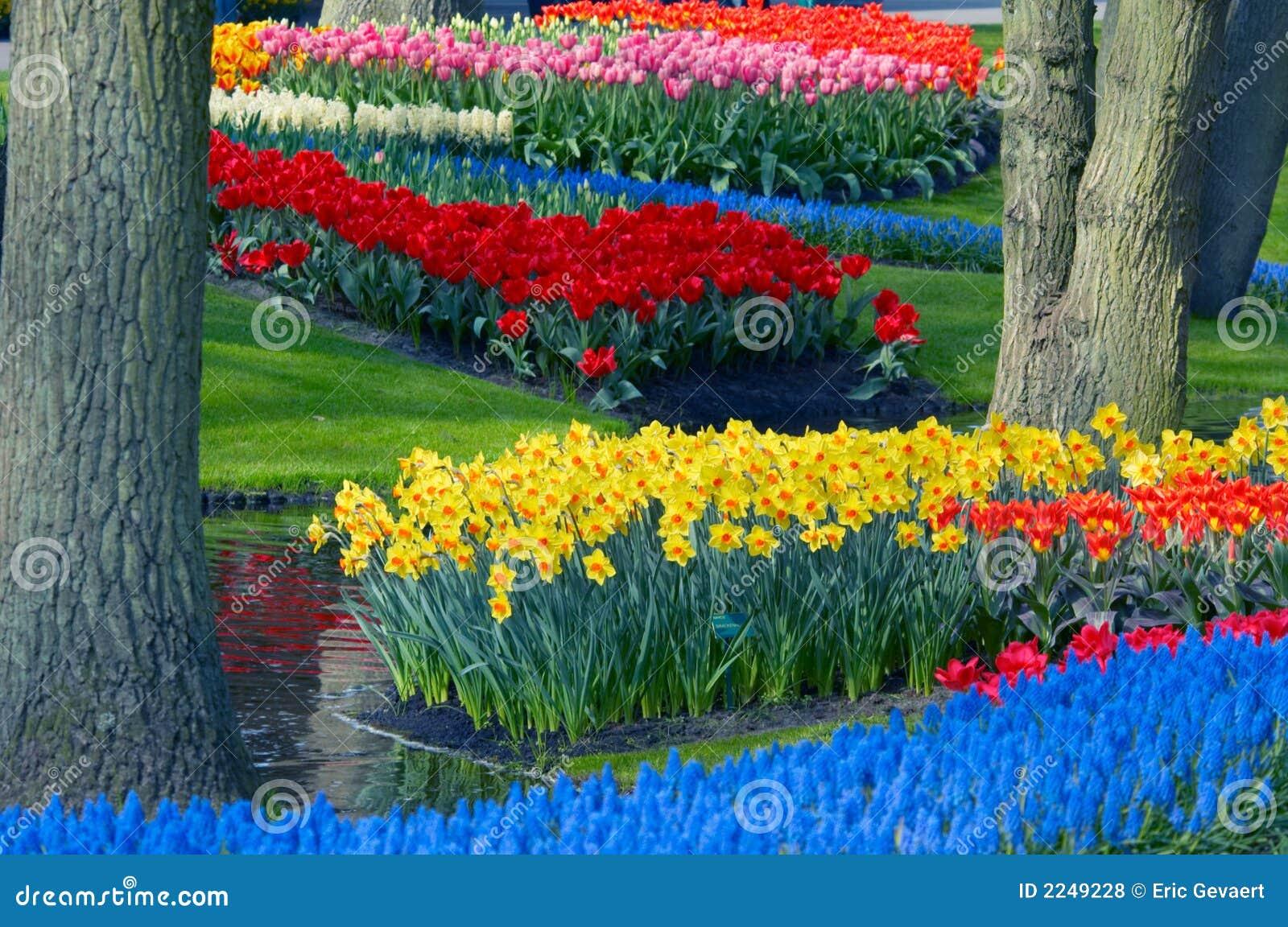 Kleurrijke bloemtuin