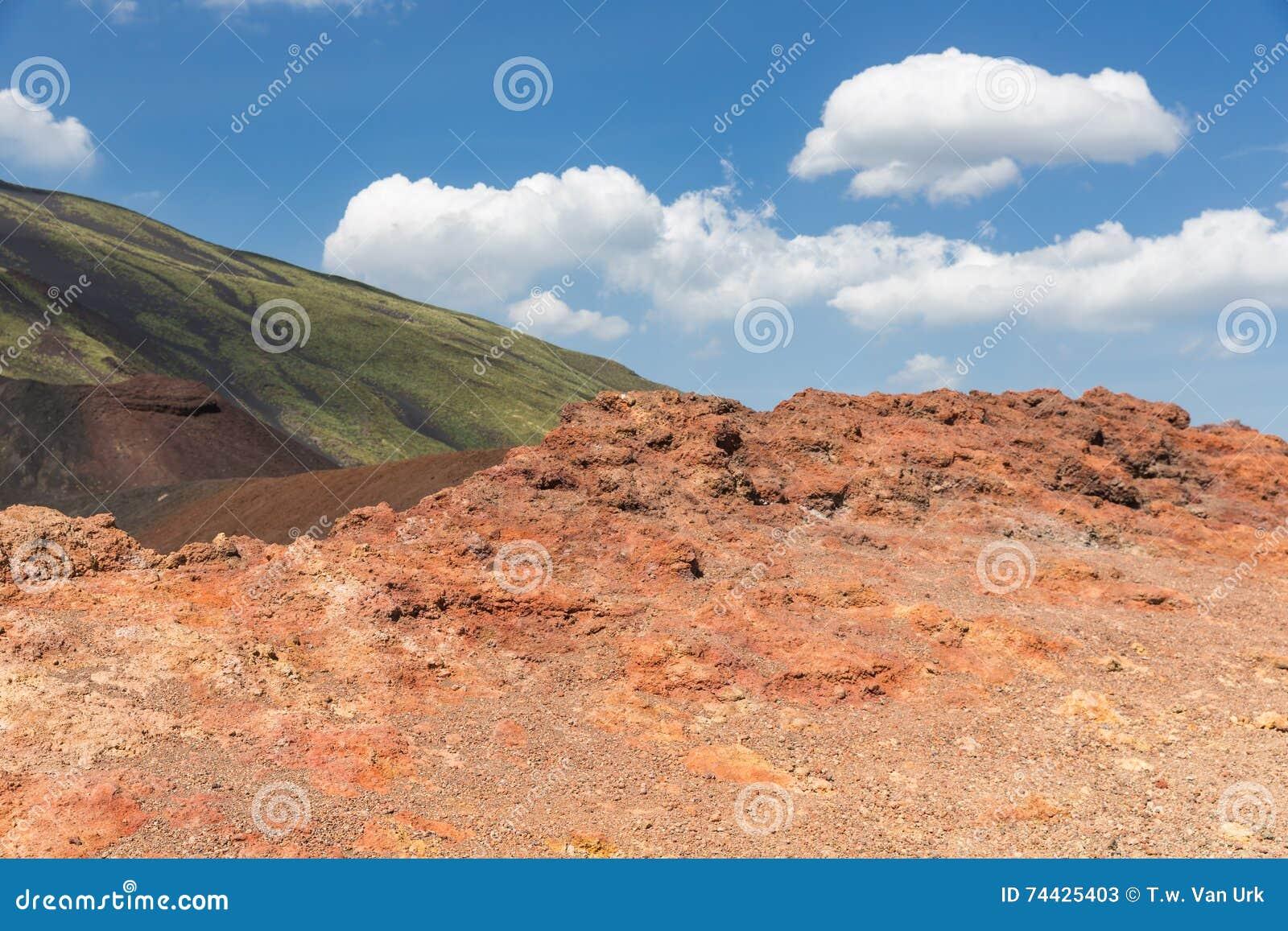 Kleurrijke hellingen van Onderstel Etna bij Italiaans Eiland Sicilië