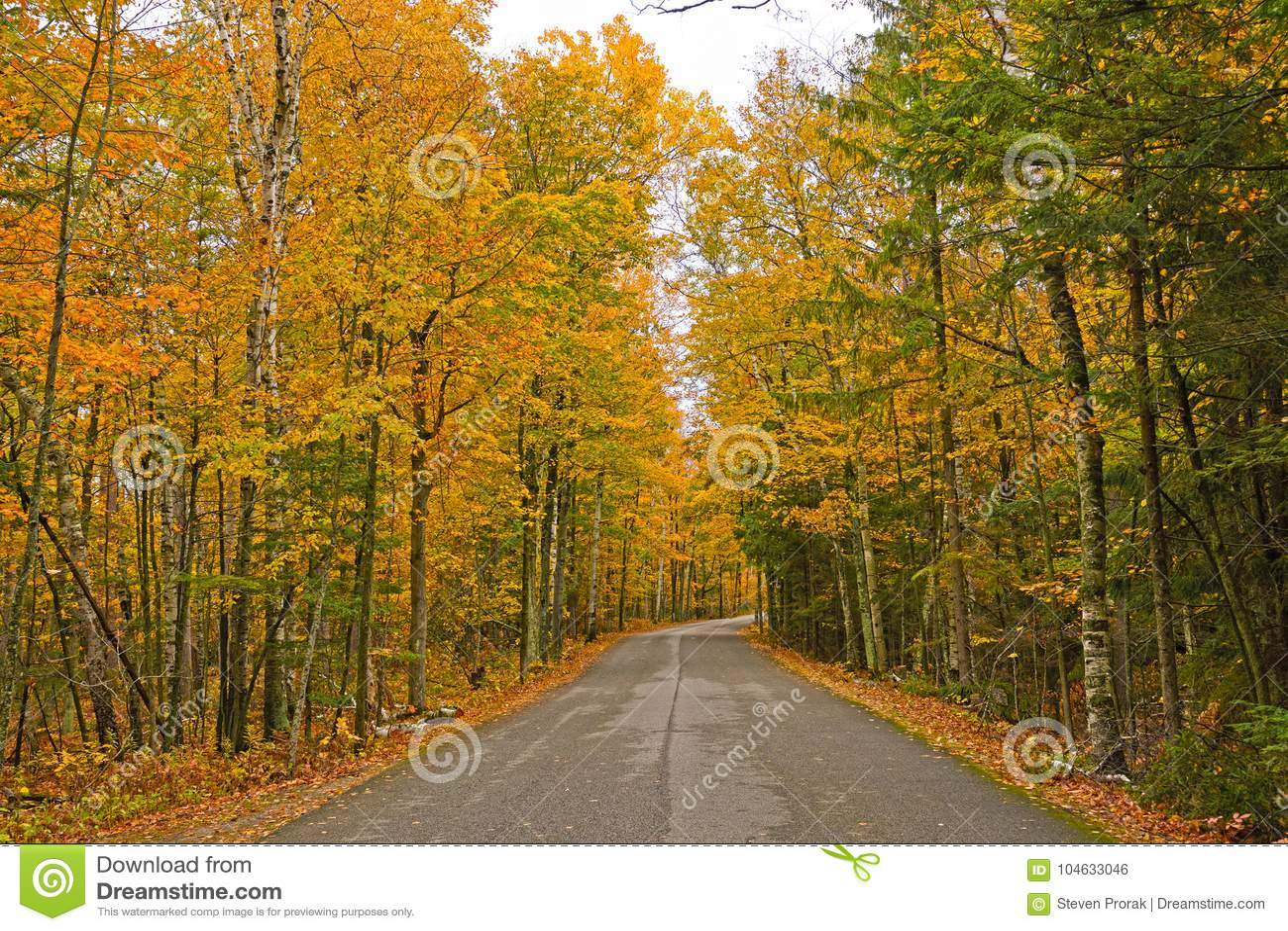 Download Kleurrijke Landelijke Weg In De Herfst Stock Foto - Afbeelding bestaande uit autumn, staat: 104633046