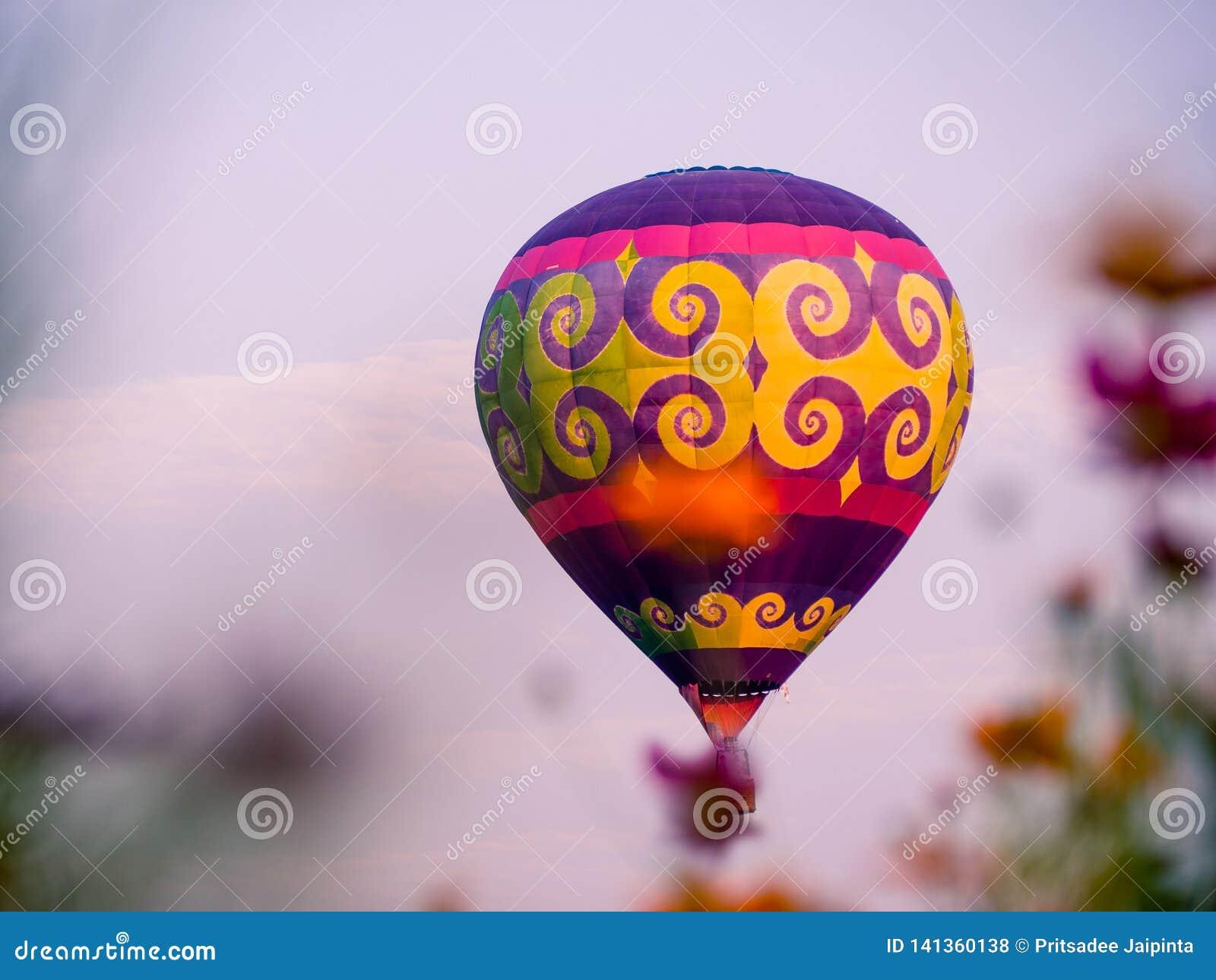 Kleurrijke luchtballonnen die over kosmosbloemen bij zonsondergang vliegen