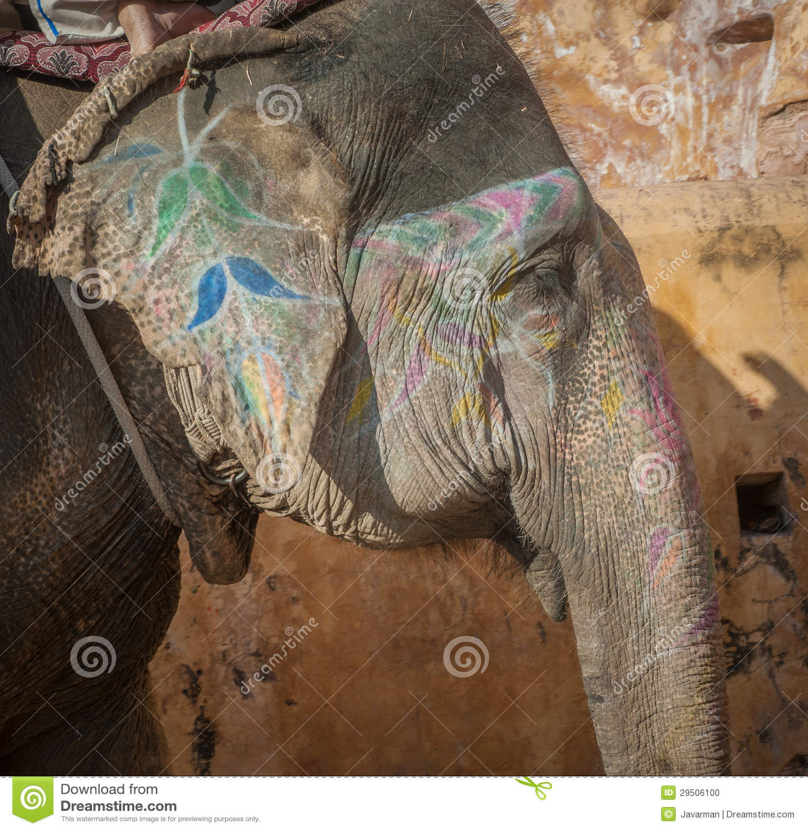 Kleurrijke olifant in Jaipur, Rajasthan, India