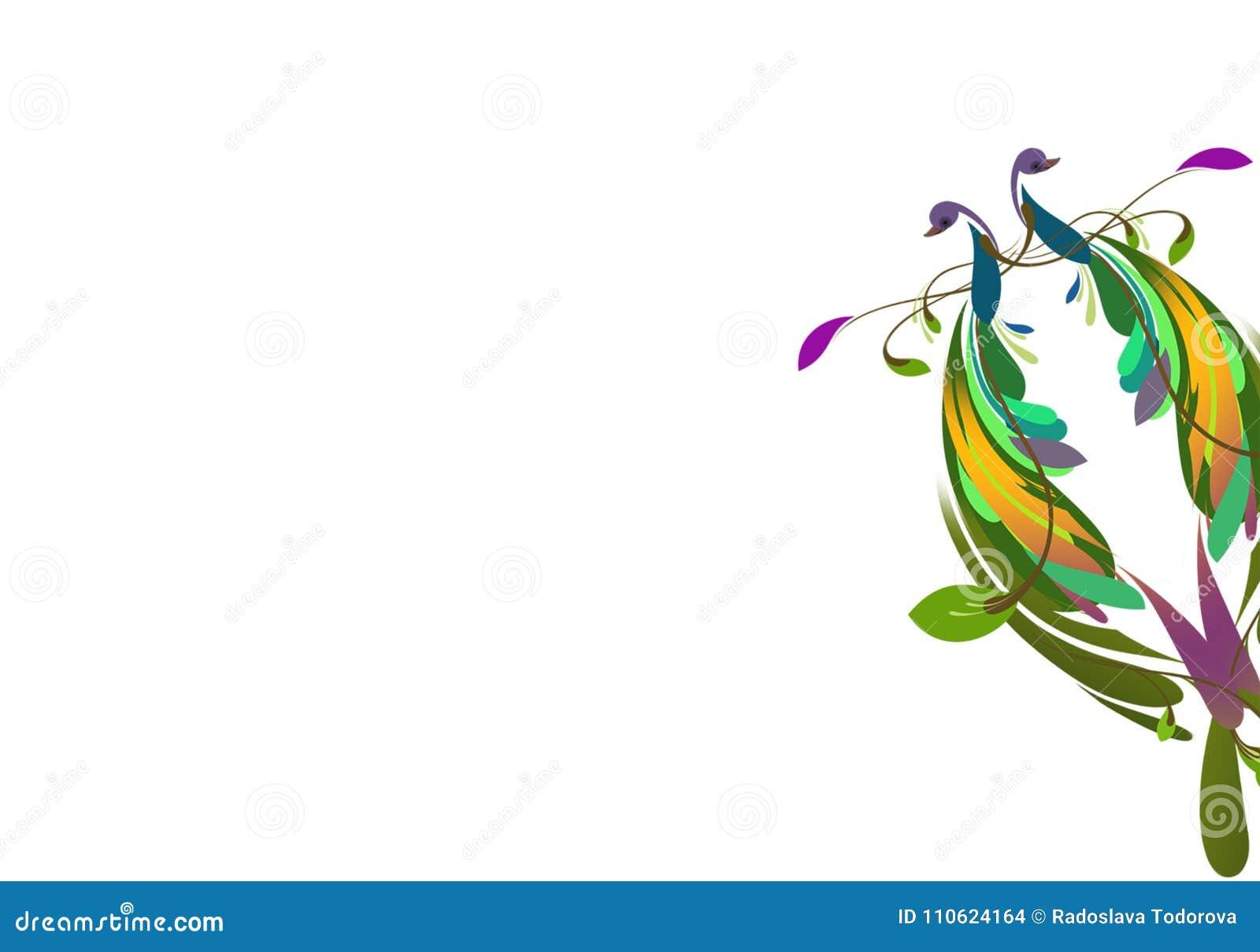 Kleurrijke Pauwenillustratie