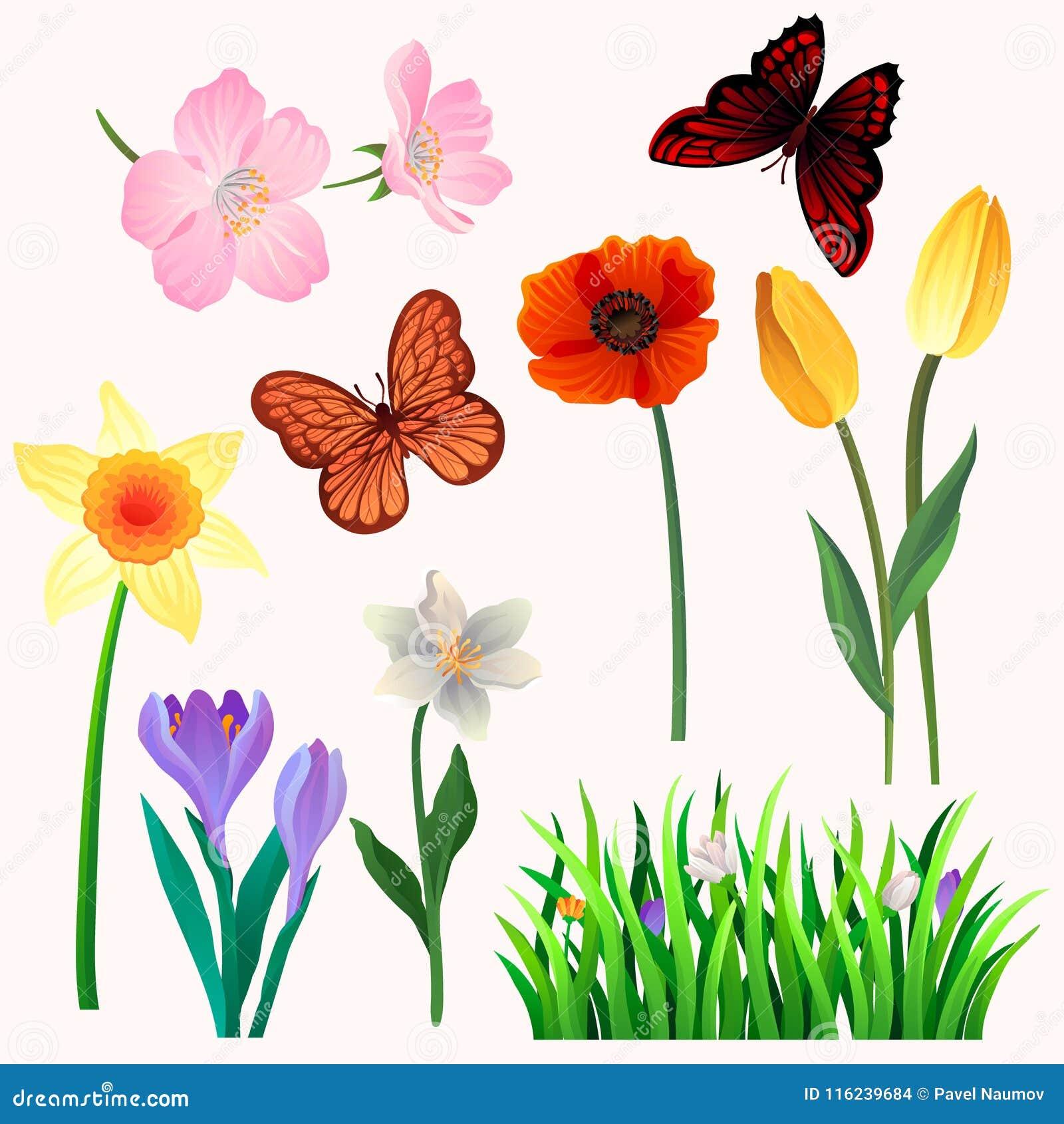 Kleurrijke vectorreeks mooie de lentebloemen en vlinders Bloeiende tuininstallaties en vliegende insecten naughty