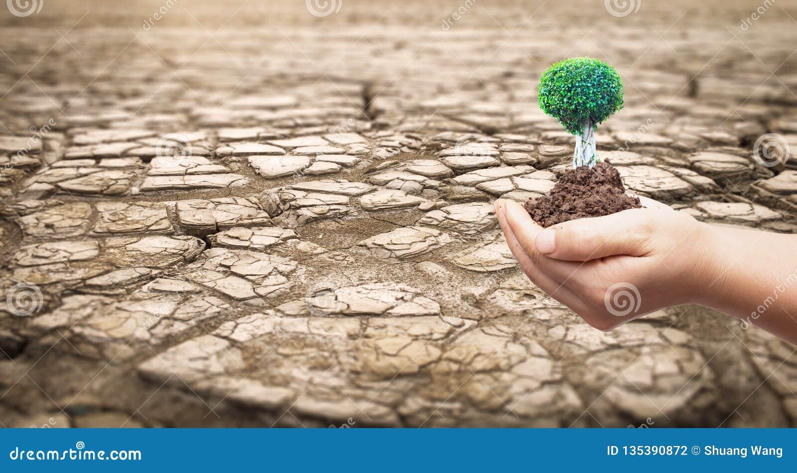Klimakonzept: Teil eines weiten Gebiets getrocknetes Land-Leidens von der Dürre
