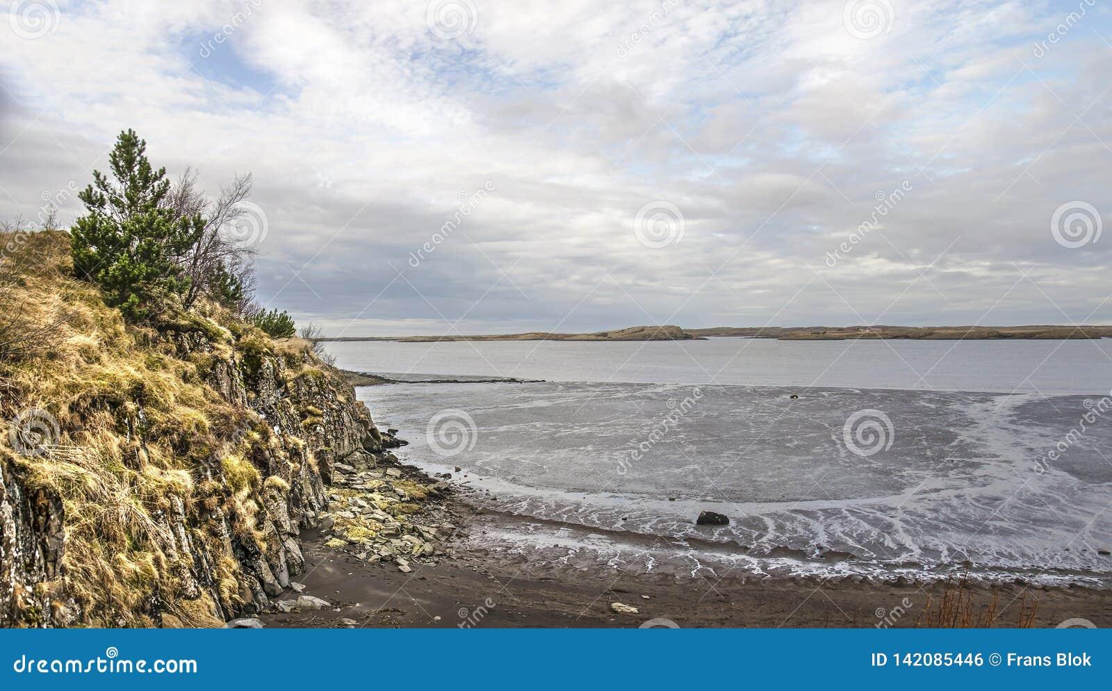 Klip, strand en mudflats