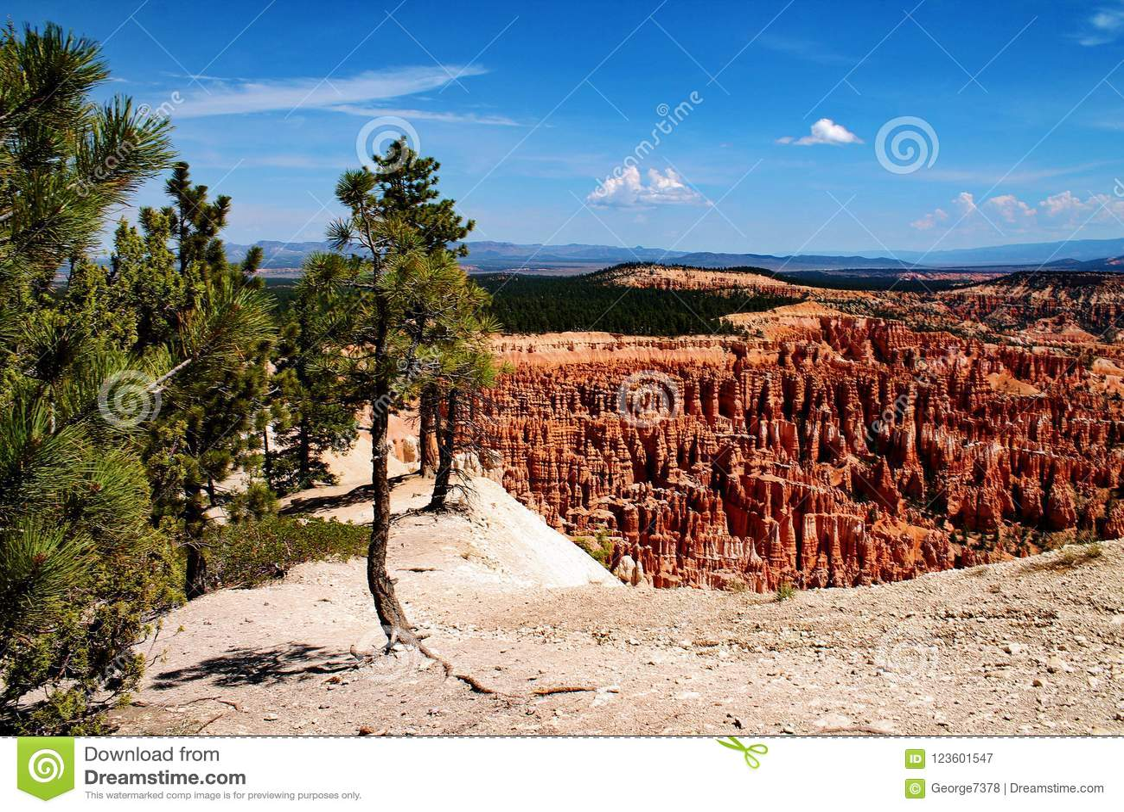 Klippenrand mit Felsenunglücksboten und nahe gelegenen Bäumen in Bryce Canyon, Utah