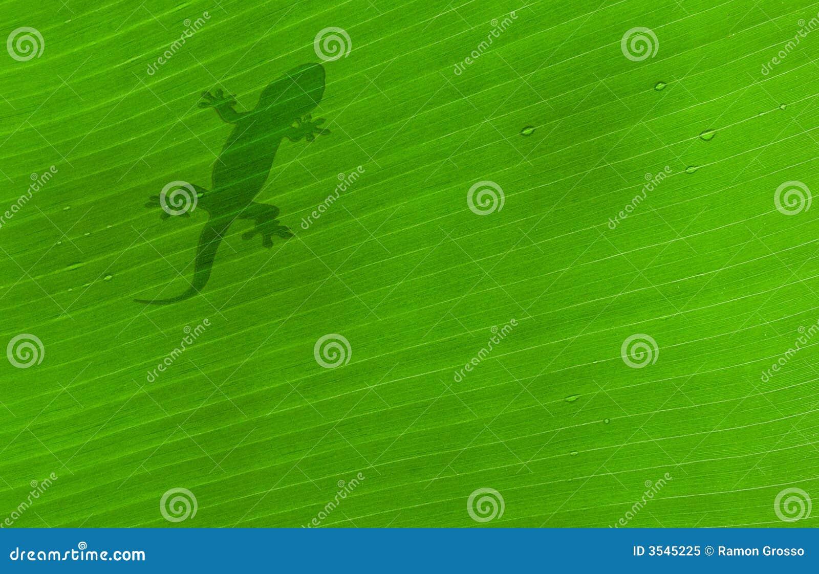 Klipsk leaf
