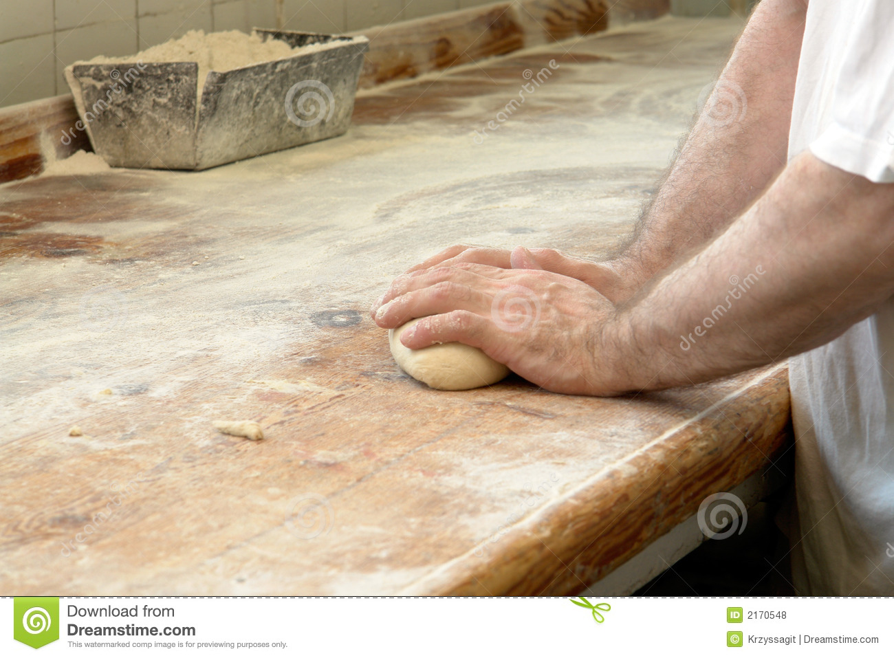 Kneading Bread In Baker S Hand Stock Photo Image 2170548