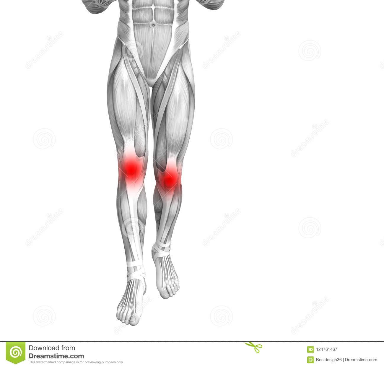Knee Human Anatomy Red Hot Spot Inflammation Stock Illustration ...