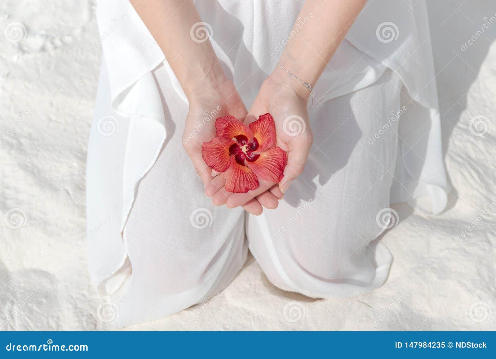 Kniende Frau im wei?en Kleid, das eine tropische Blume in ihrer Hand h?lt